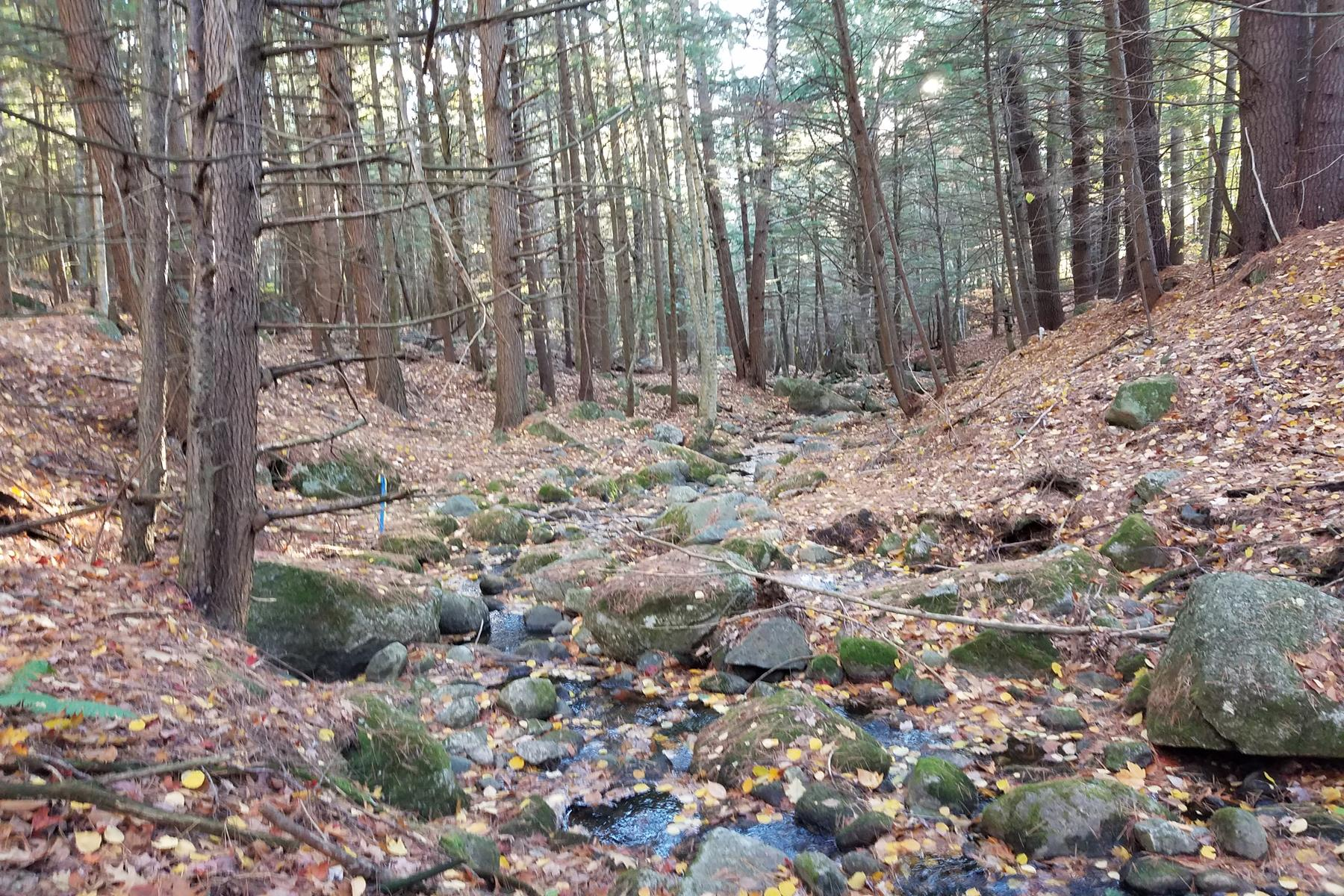 Land for Sale at lot 41-5 Cascade, Wilmot Wilmot, New Hampshire, 03287 United States