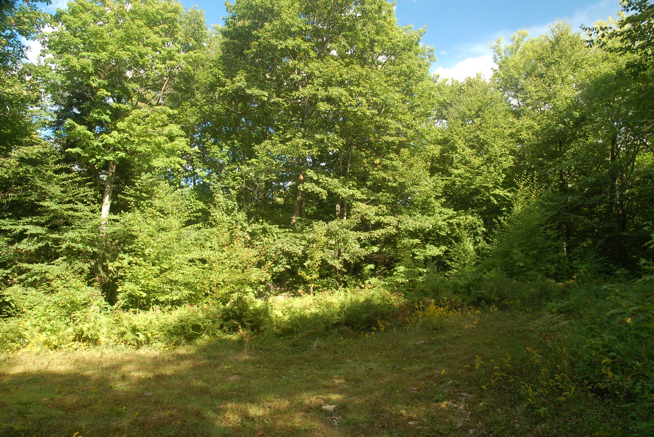 Land for Sale at Lot 74-1 Nh Route 140, Gilmanton Gilmanton, New Hampshire, 03237 United States