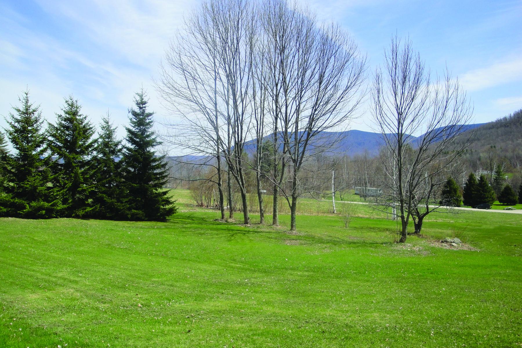 土地 为 销售 在 Panoramic Mountain Vistas 169 Congdon 丹比, 佛蒙特州 05739 美国