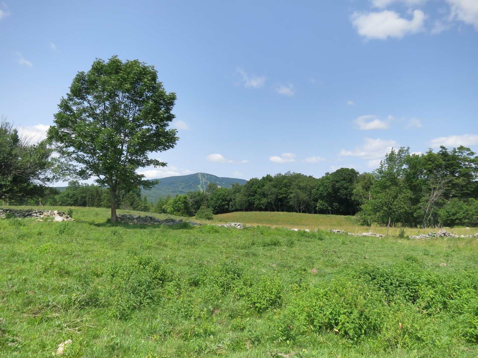Land for Sale at Vermont Route 30, Winhall Winhall, Vermont, 05340 United States