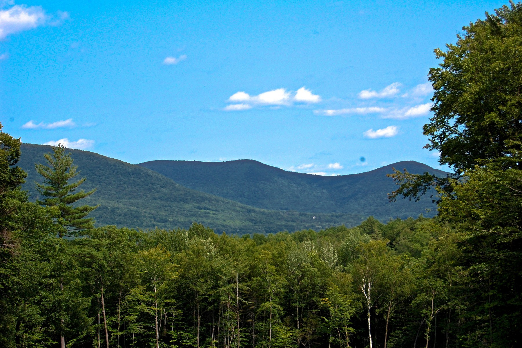Земля для того Продажа на Private Estate Property 863 Rogers Rd Rupert, Вермонт 05768 Соединенные Штаты