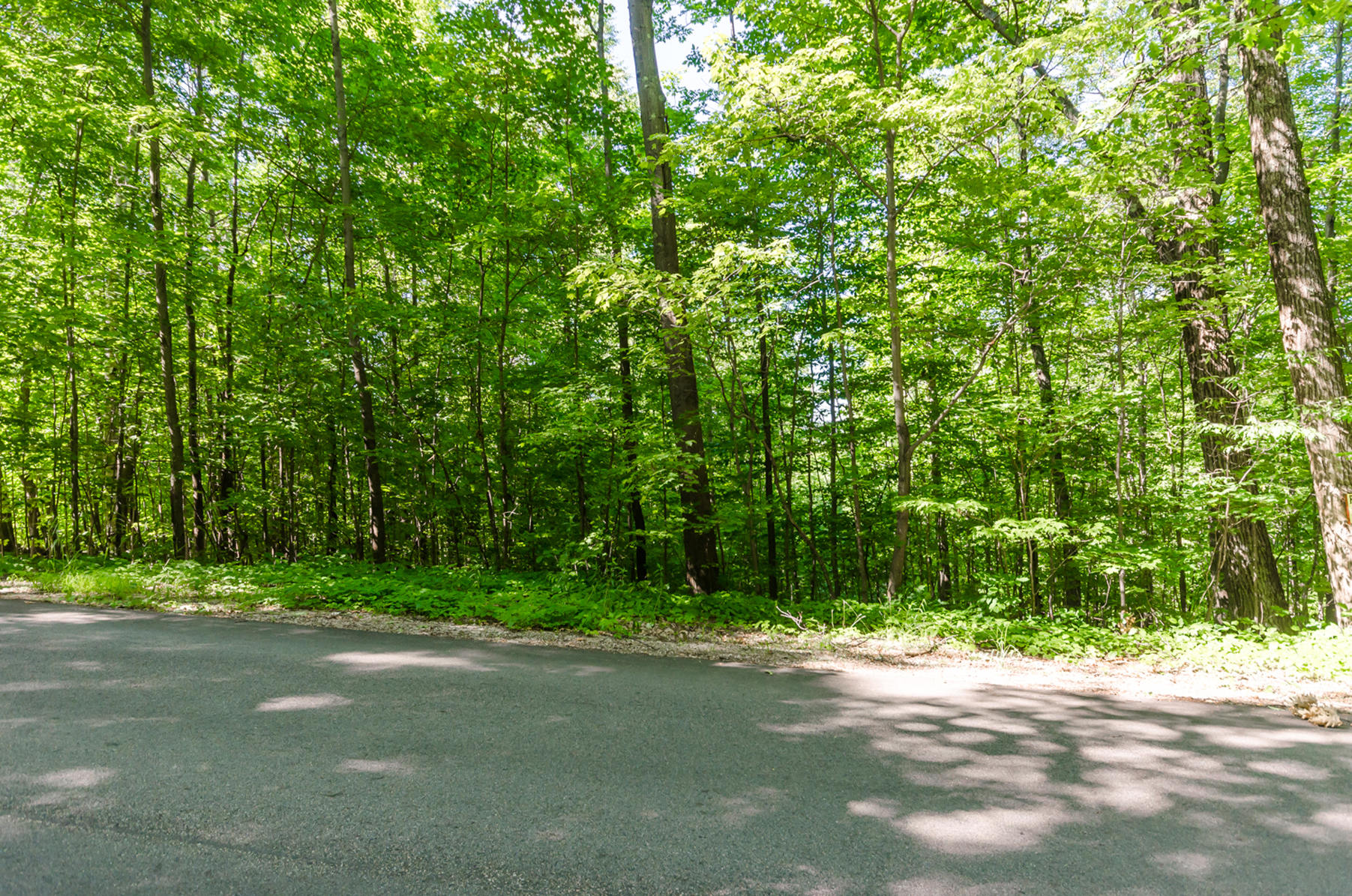 Terreno para Venda às Lot 20 Mountain Rd, Francestown Francestown, New Hampshire, 03043 Estados Unidos