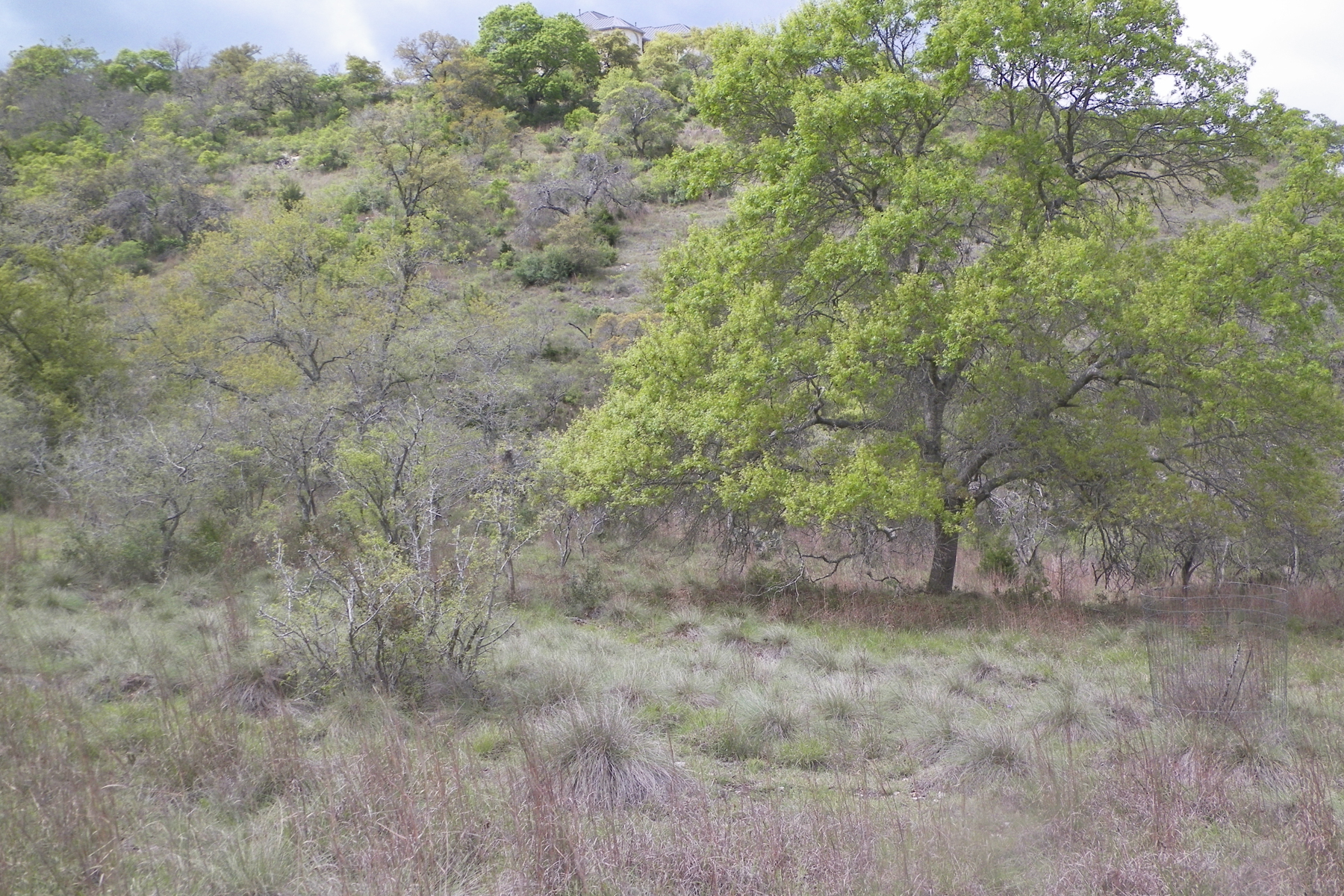 Additional photo for property listing at Private Lot in Falling Water 135 Echo Canyon Dr Comfort, Texas 78013 Estados Unidos