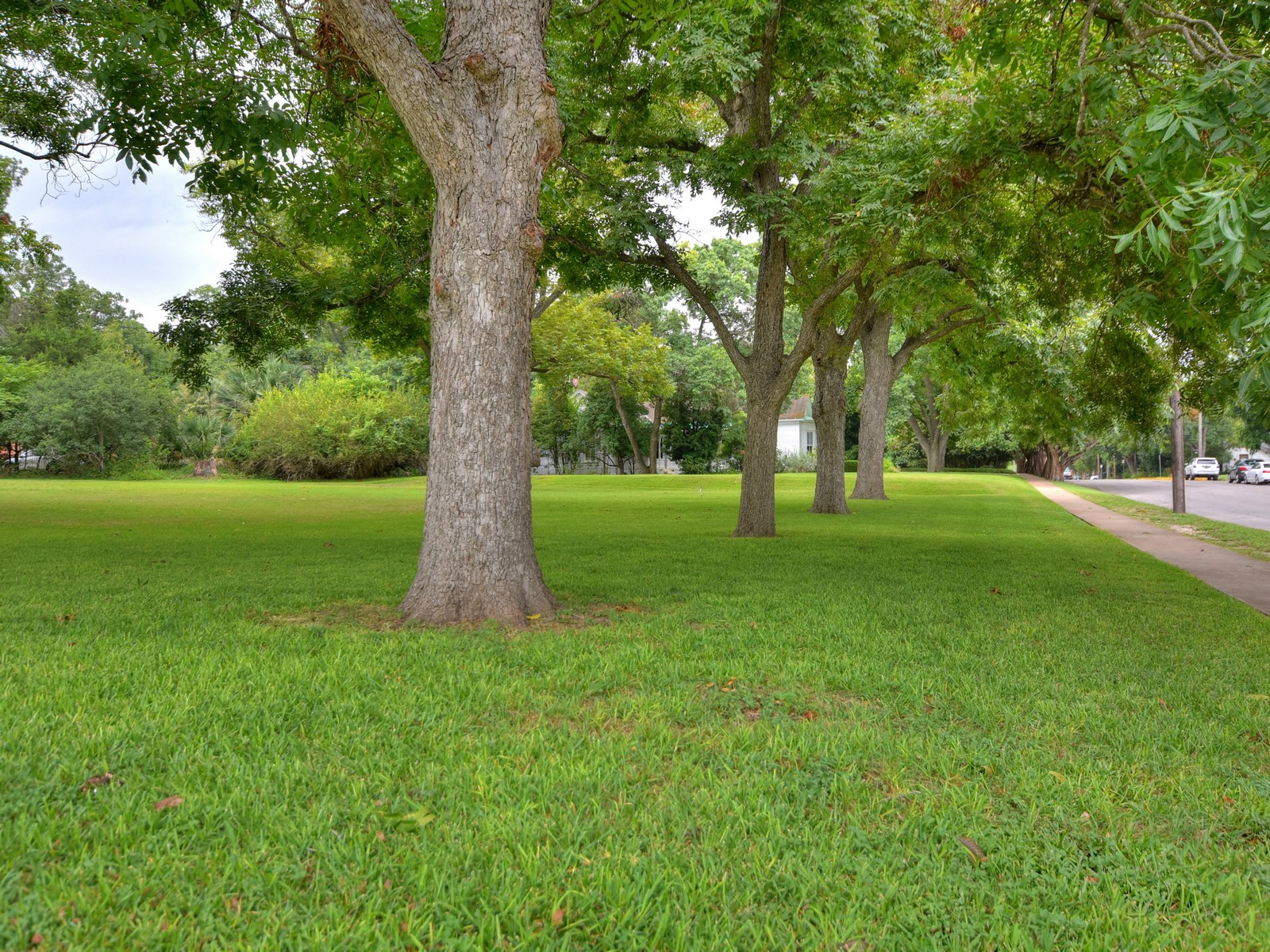 Additional photo for property listing at Historic Jewel Built in 1863 581 W Coll New Braunfels, Texas 78130 United States
