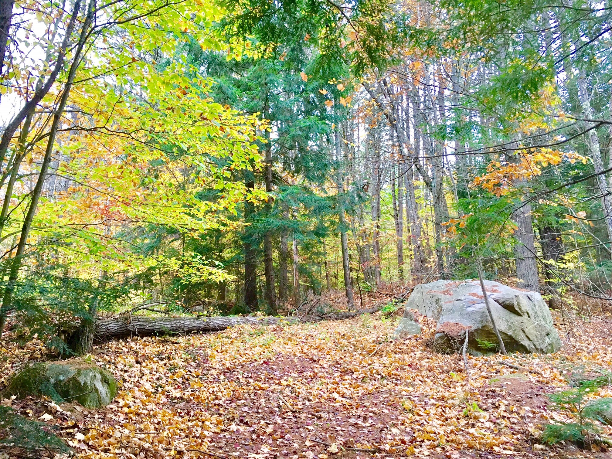 Land für Verkauf beim 20 West Shore, Swanzey Swanzey, New Hampshire, 03446 Vereinigte Staaten