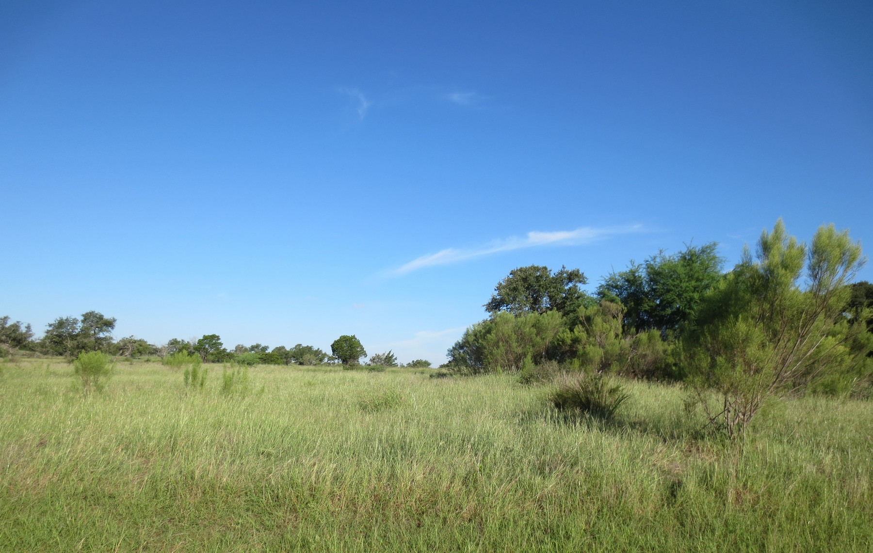 Terreno por un Venta en Best Remaining Lot in Belvedere 7908 Lynchburg Dr Austin, Texas 78738 Estados Unidos