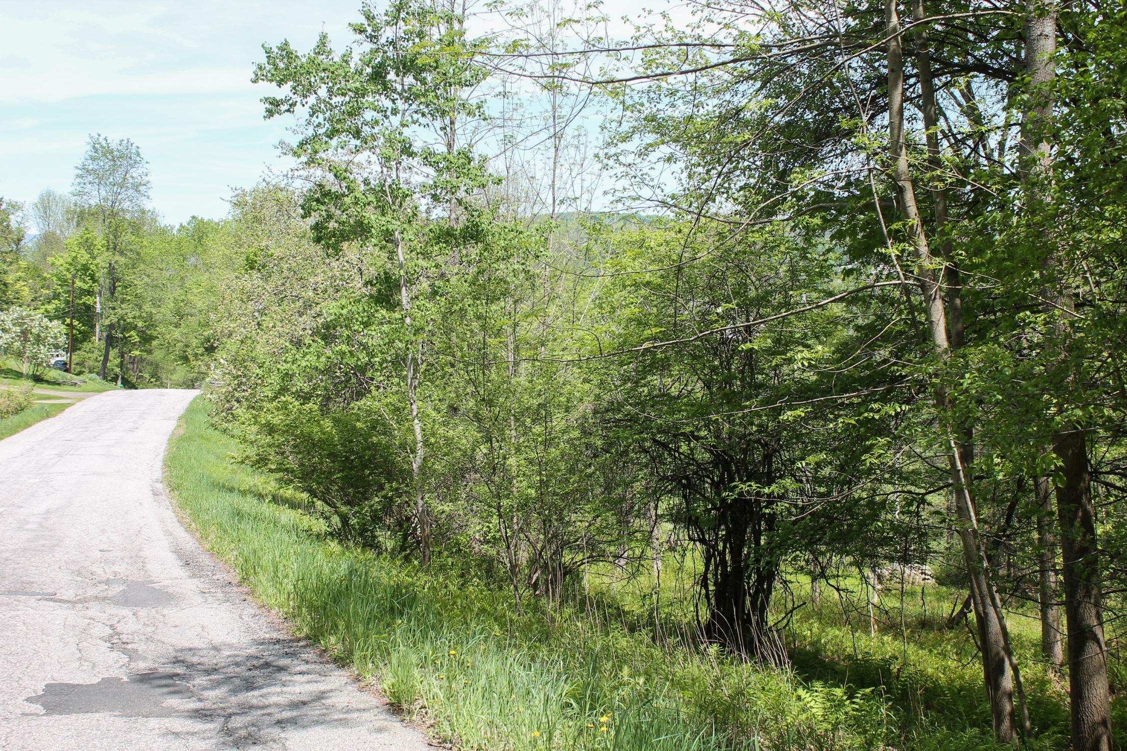 Terreno para Venda às Hill, Montpelier Montpelier, Vermont, 05602 Estados Unidos