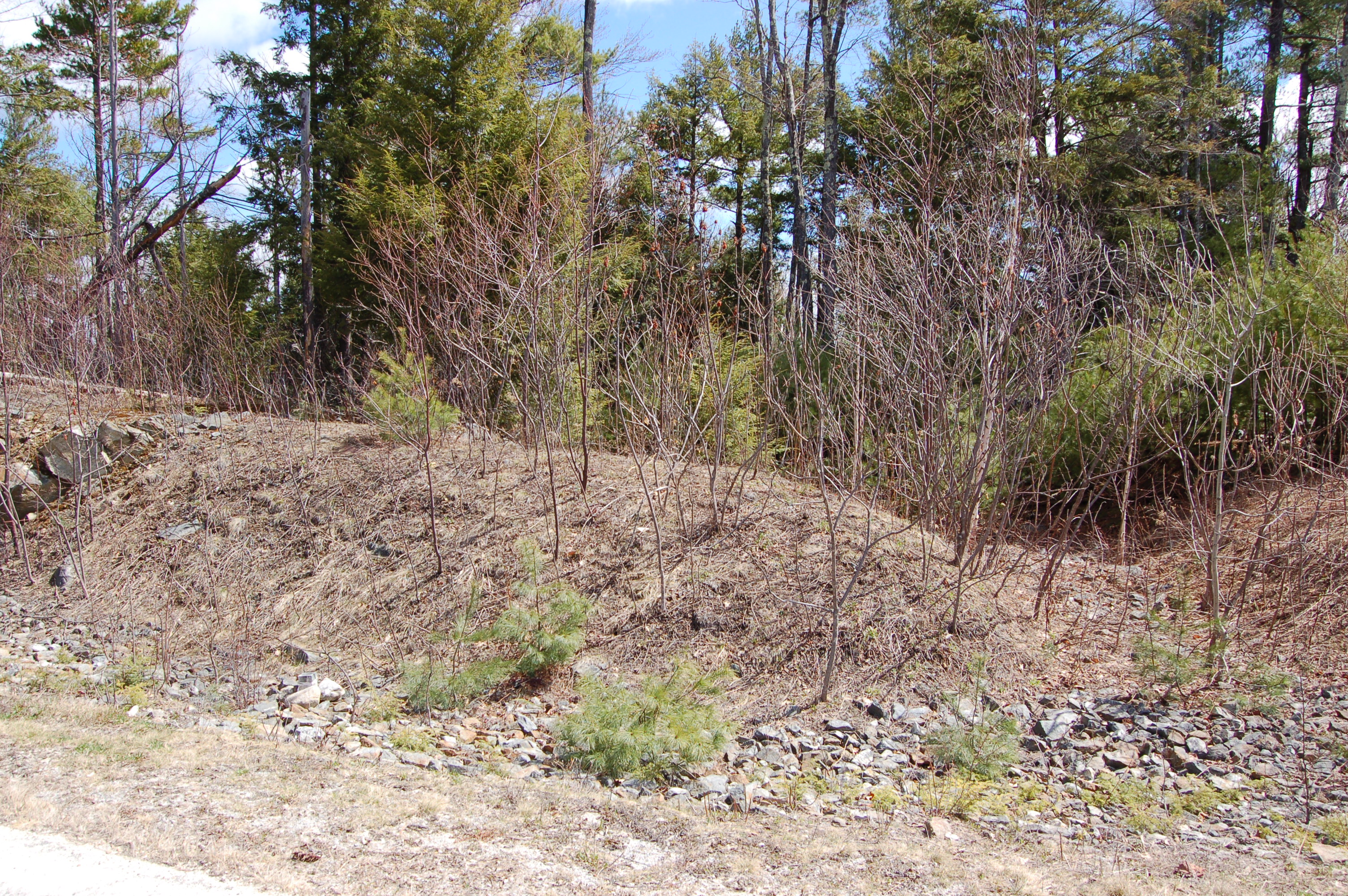 Land for Sale at 105 Chapin Way, Newbury Newbury, New Hampshire, 03255 United States