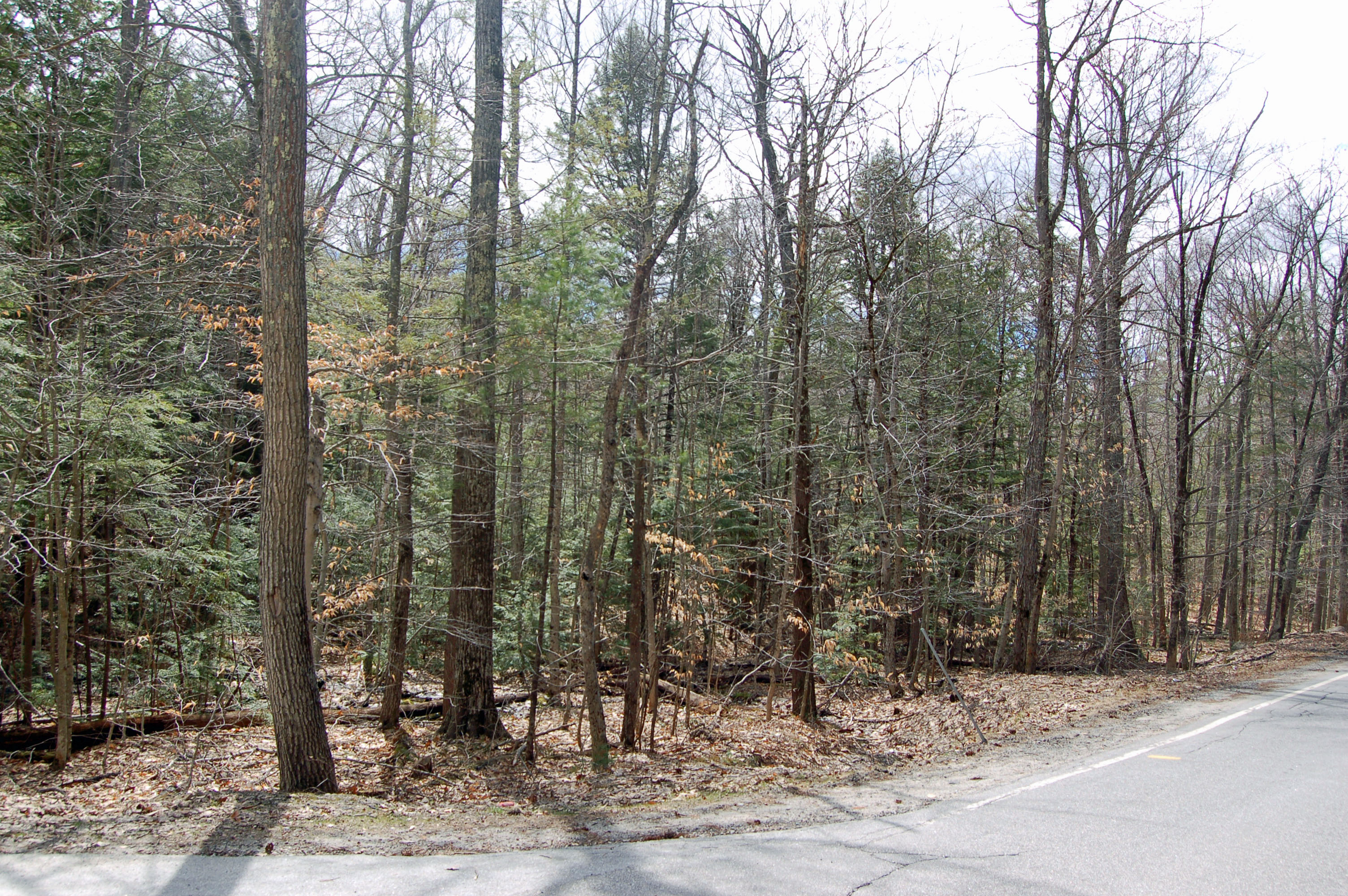 Land for Sale at Great 5+ Acre Lot Route 114 Sutton, New Hampshire, 03221 United States