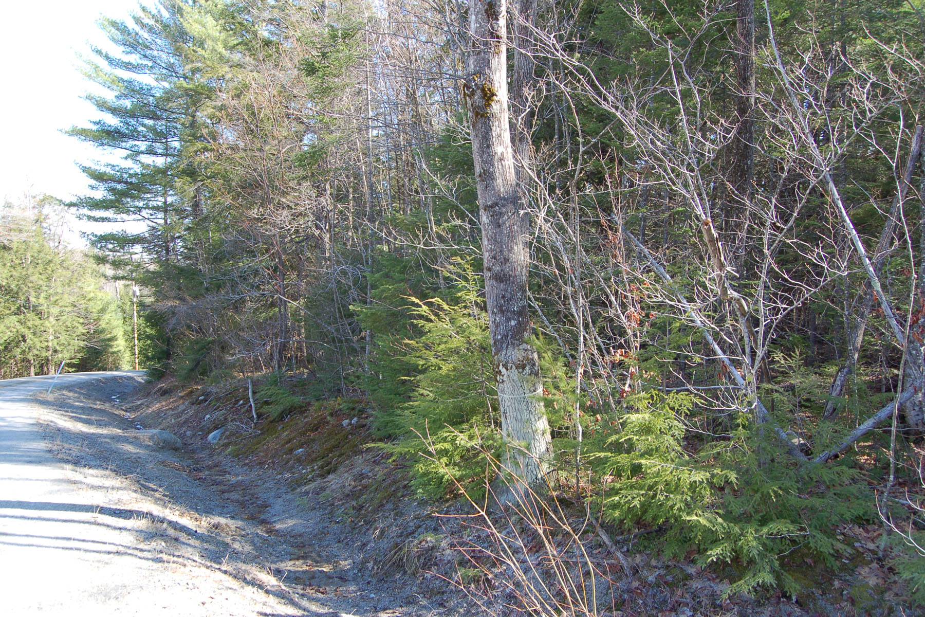 Land for Sale at 3.9 Acre Building Lot Winslow Rd Sutton, New Hampshire, 03221 United States