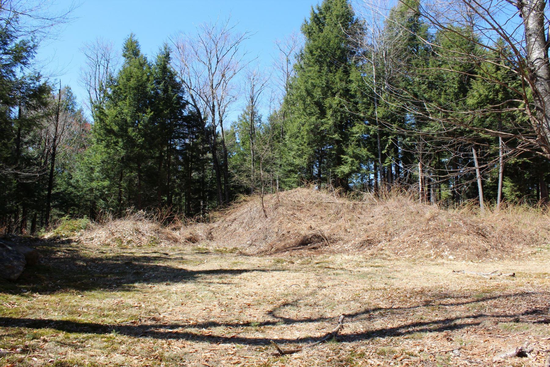 土地 为 销售 在 22 Fillion Drive, Springfield 斯普林菲尔德, 佛蒙特州, 05156 美国