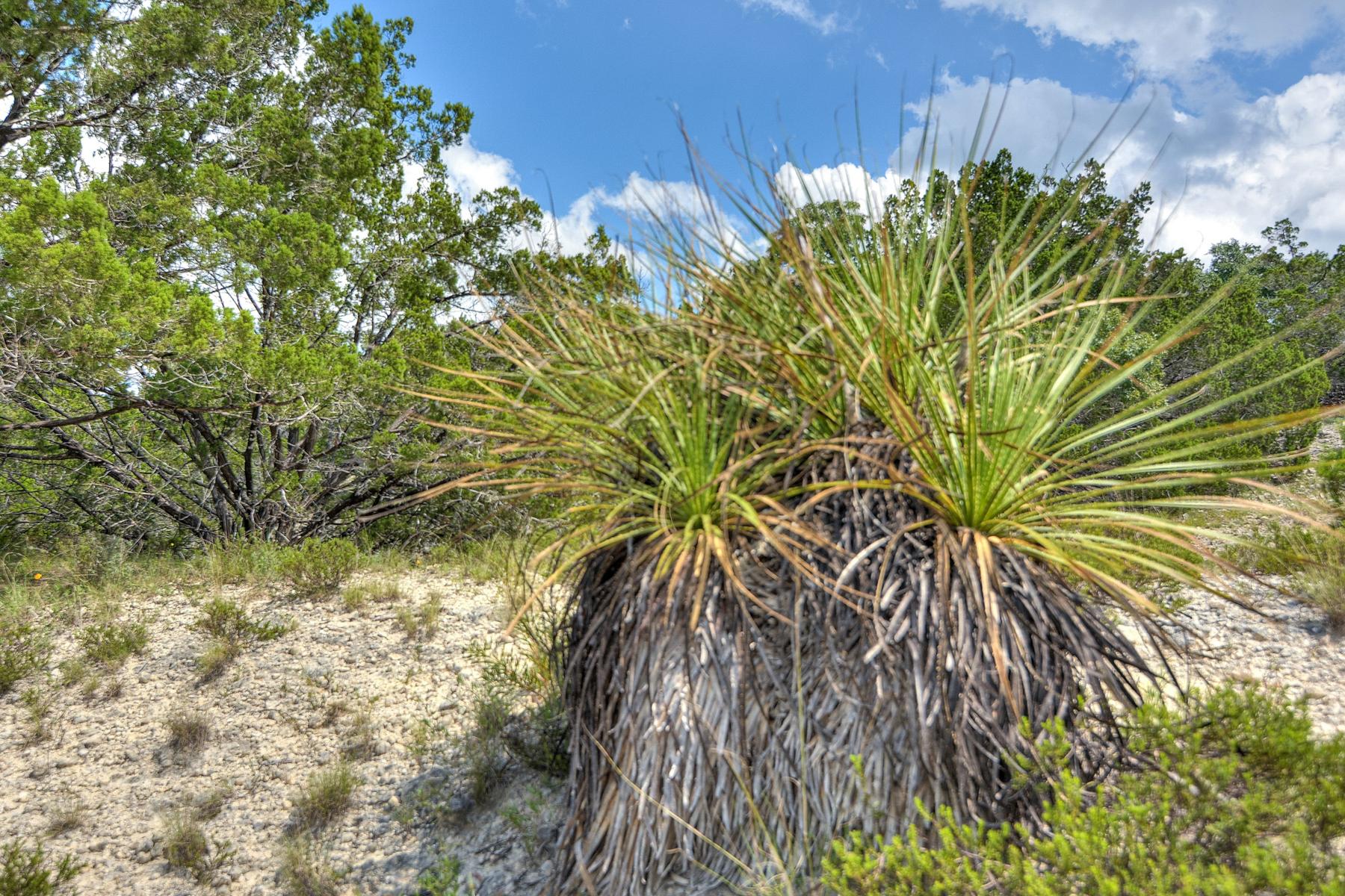 Additional photo for property listing at Darmstat Creek Ranch 912 Fm 473 Boerne, Texas 78006 Estados Unidos