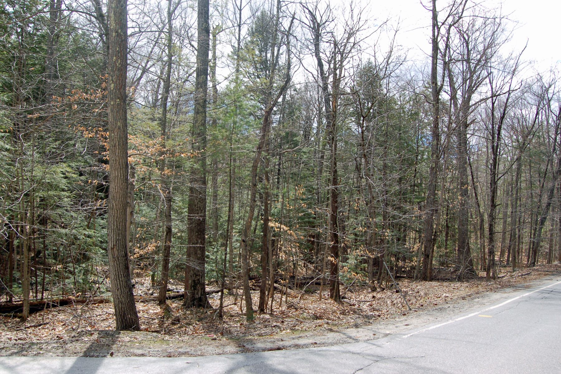Land for Sale at Great 5+ Acre Lot Route 114 Sutton, New Hampshire 03221 United States