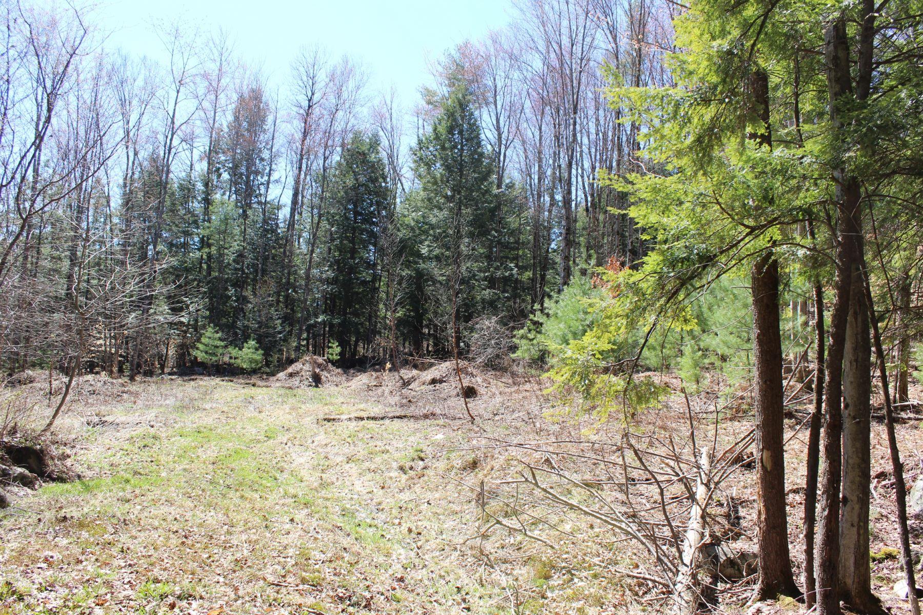 土地 为 销售 在 16 Filion Drive, Lot #8, Springfield 斯普林菲尔德, 佛蒙特州, 05156 美国