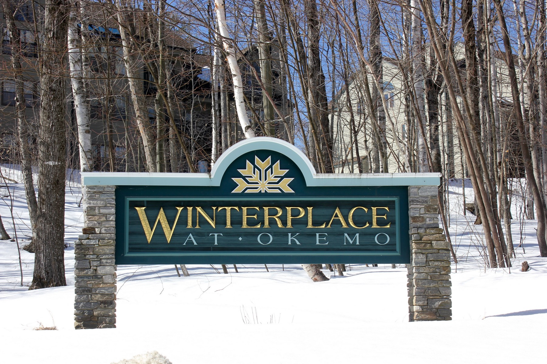 Condomínio para Venda às Top Floor at Winterplace! 46 Fowler Road, Unit O301 O301 Ludlow, Vermont, 05149 Estados Unidos