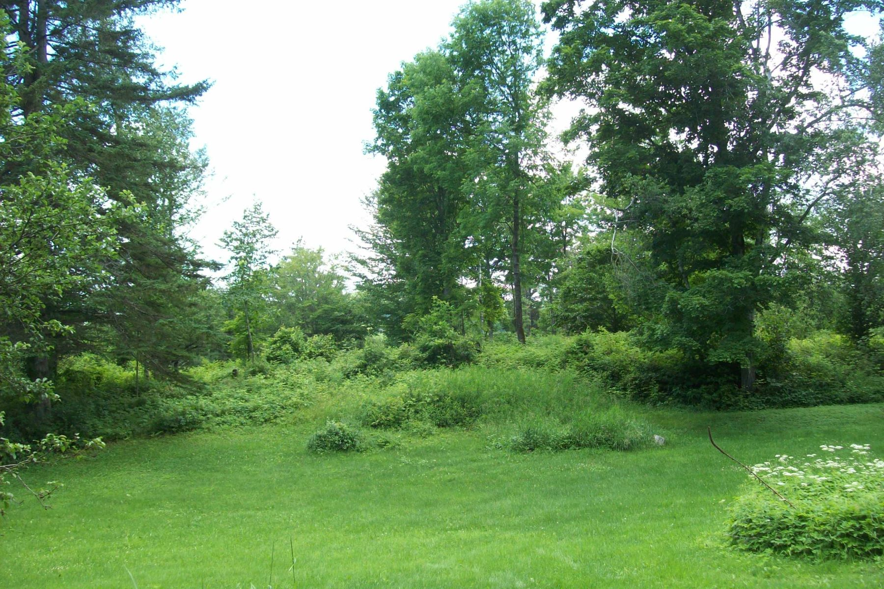 Land for Sale at Old apple trees and pretty views 297 Coppermine Rd Corinth, Vermont 05039 United States
