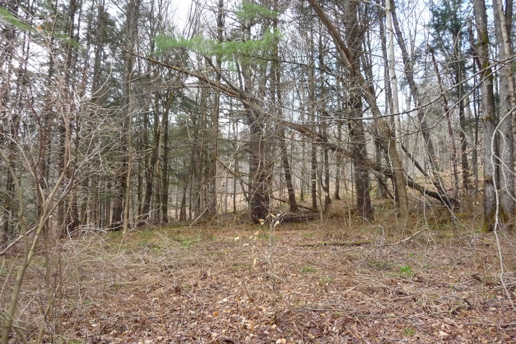 Land for Sale at Near National Park, town and ski areas Tucker, Woodstock, Vermont, 05091 United States