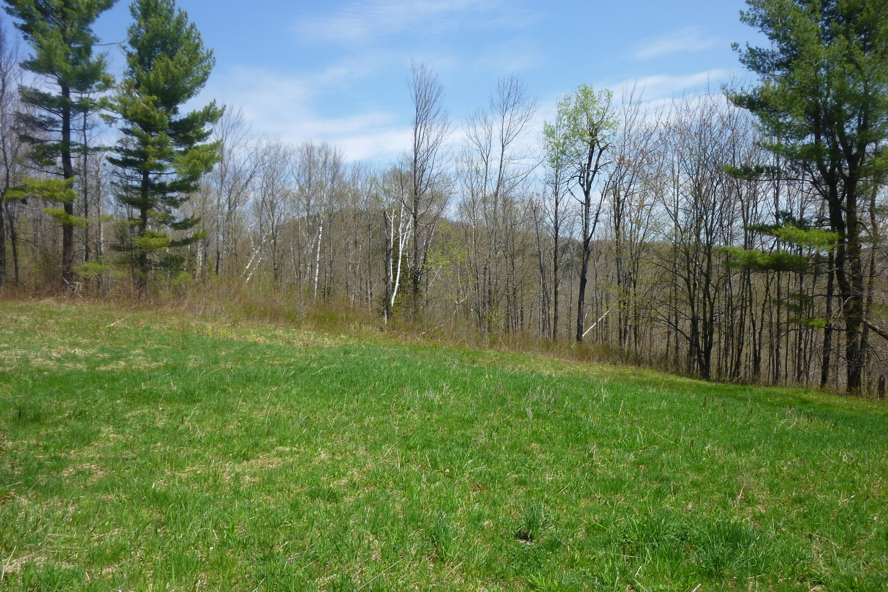 Terreno por un Venta en Lovely Meadow with A View! Lot 1 North Hill Rd Andover, Vermont, 05143 Estados Unidos
