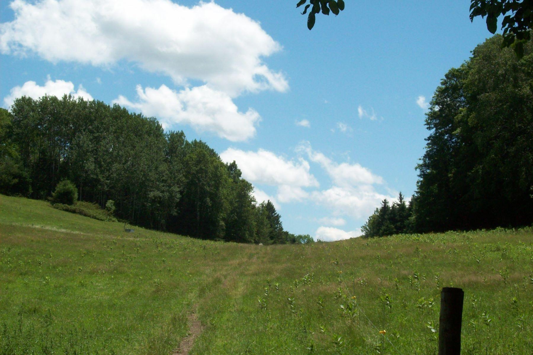 Terreno por un Venta en Views of hills and mountains 4173 Chelsea Rd, Corinth, Vermont, 05039 Estados Unidos