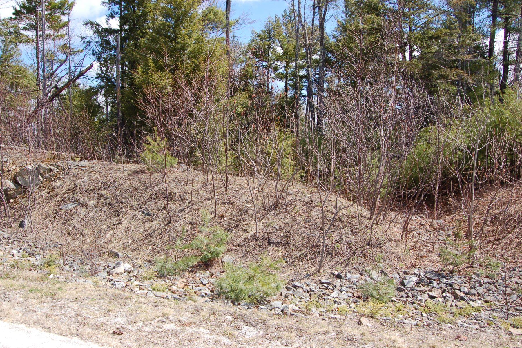 Land for Sale at 105 Chapin Way, Newbury Newbury, New Hampshire, 03255 United States
