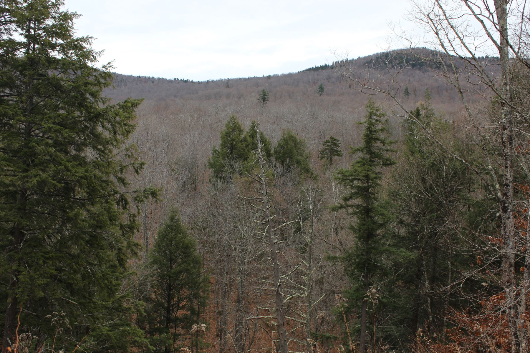 Land for Sale at Abuts conserved lands, stream Curtis Hollow Rd, Woodstock, Vermont, 05091 United States