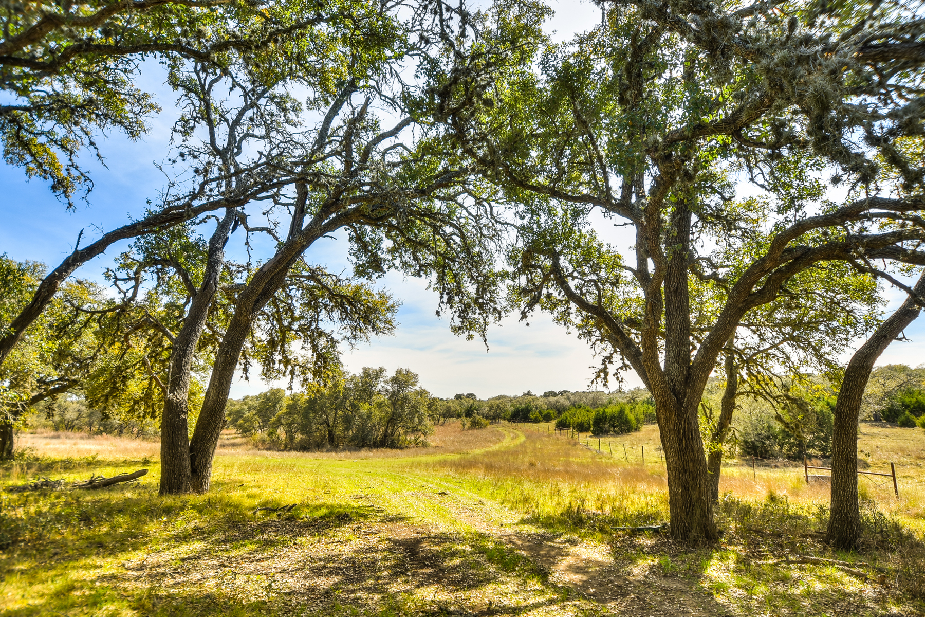Farm / Ranch / Plantation for Sale at 30+/- Acres in Blanco of Gently Rolling Terrain 0 Rocky Rd Blanco, Texas 78606 United States