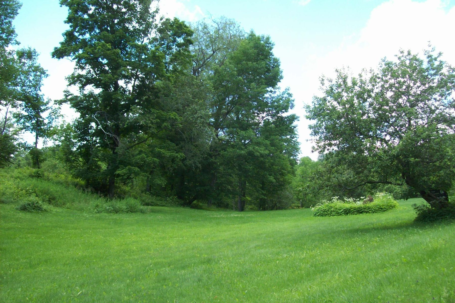 Additional photo for property listing at Old apple trees and pretty views 297 Coppermine Rd Corinth, Vermont 05039 United States