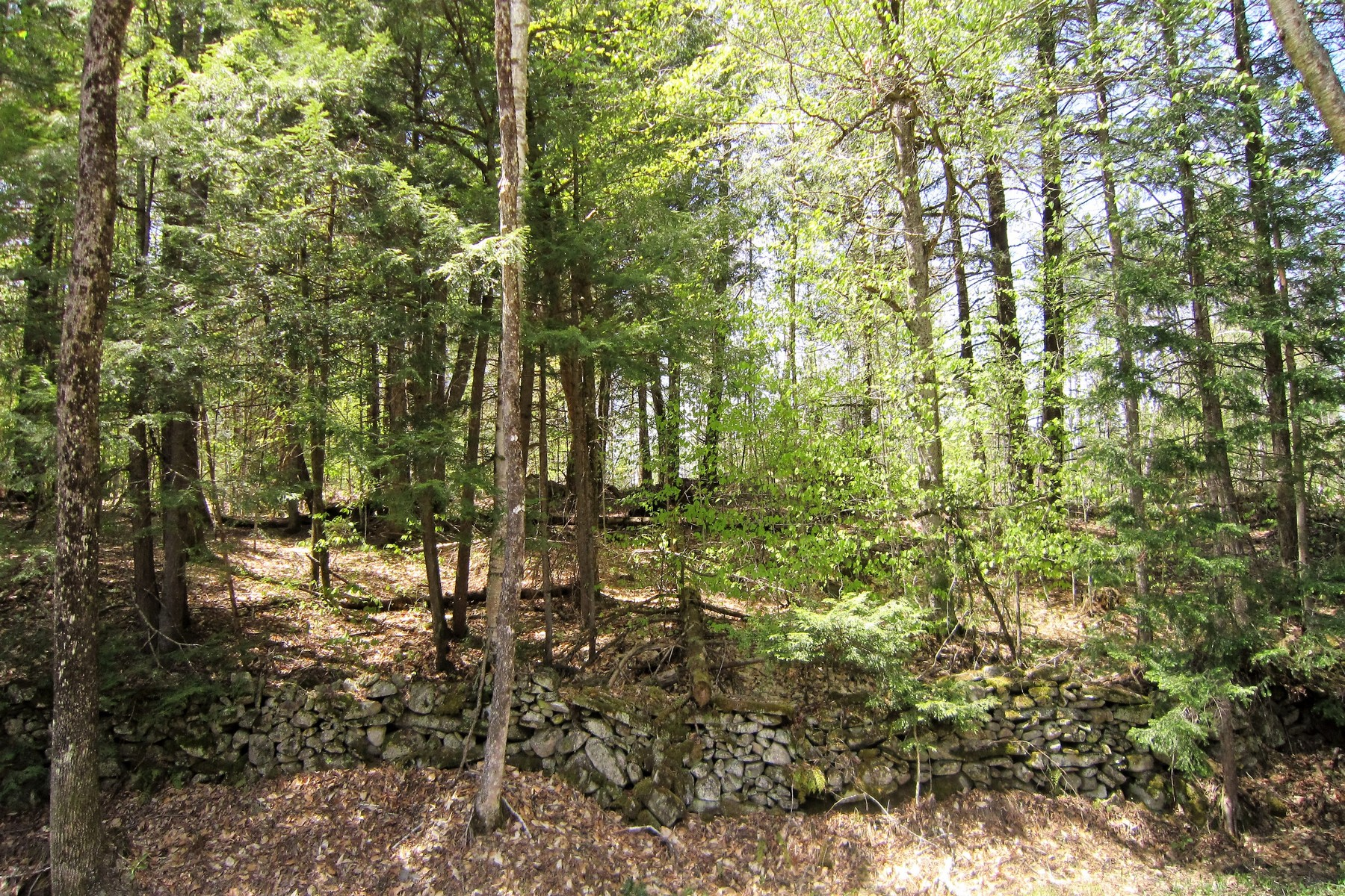 Land for Sale at Great Location! Twenty Mile Stream Rd, Reading, Vermont, 05062 United States