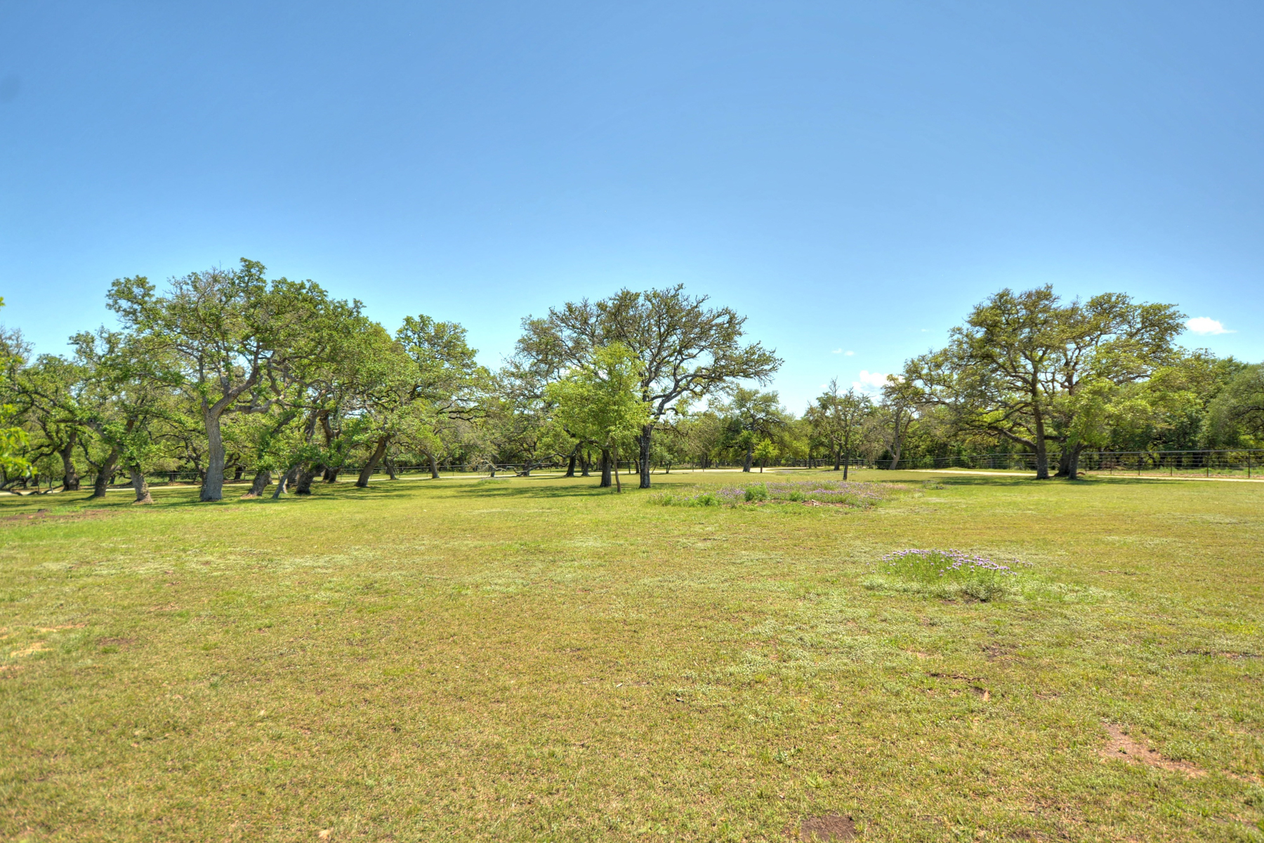 Additional photo for property listing at 15.84+/- Acre Premium Horse Property 47 Pfeiffer Rd Boerne, Texas 78006 Estados Unidos