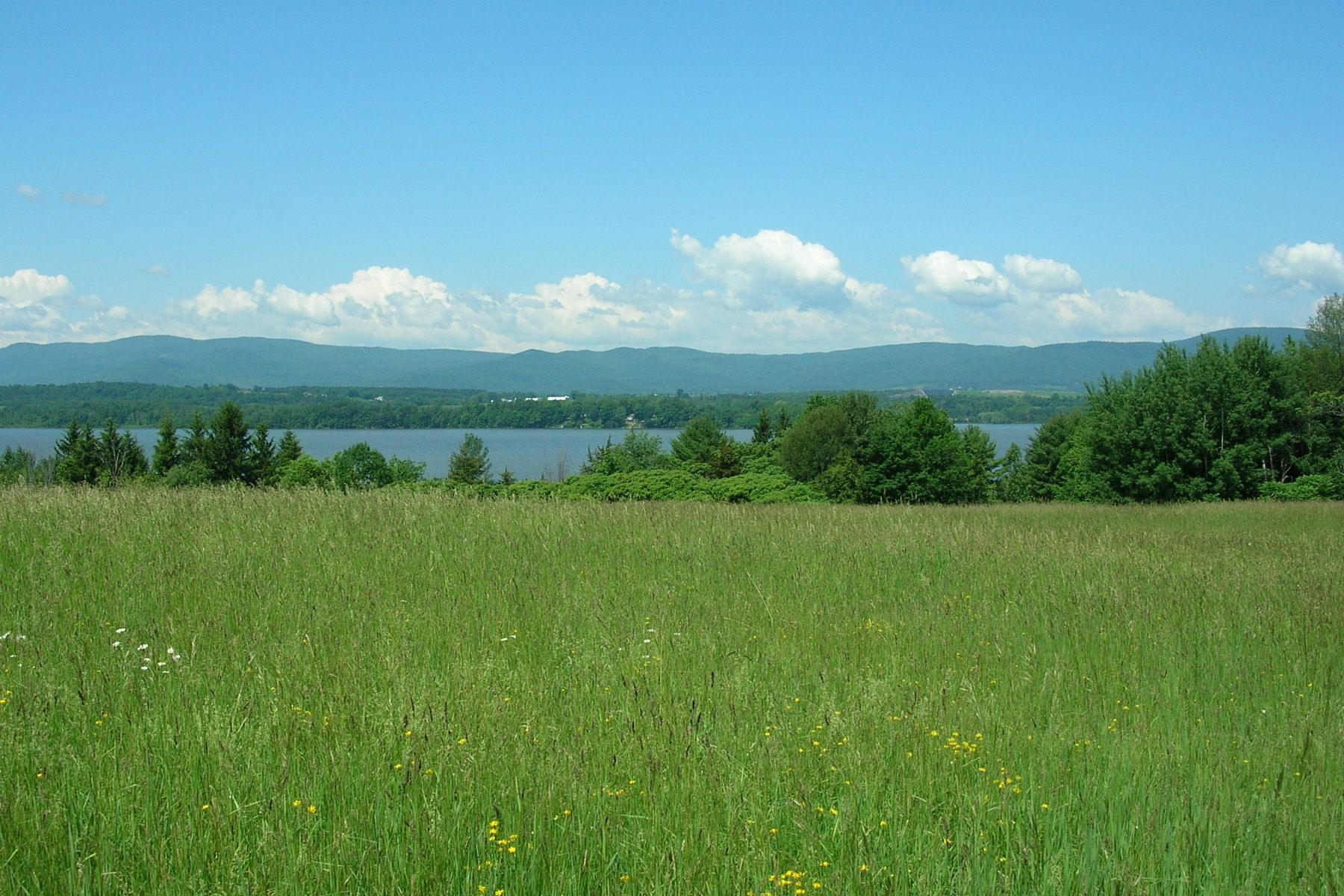 Single Family Home for Sale at 103 acres - 2,000 ft of Lake Champlain Frontage 805 Smith St Shoreham, Vermont, 05770 United States