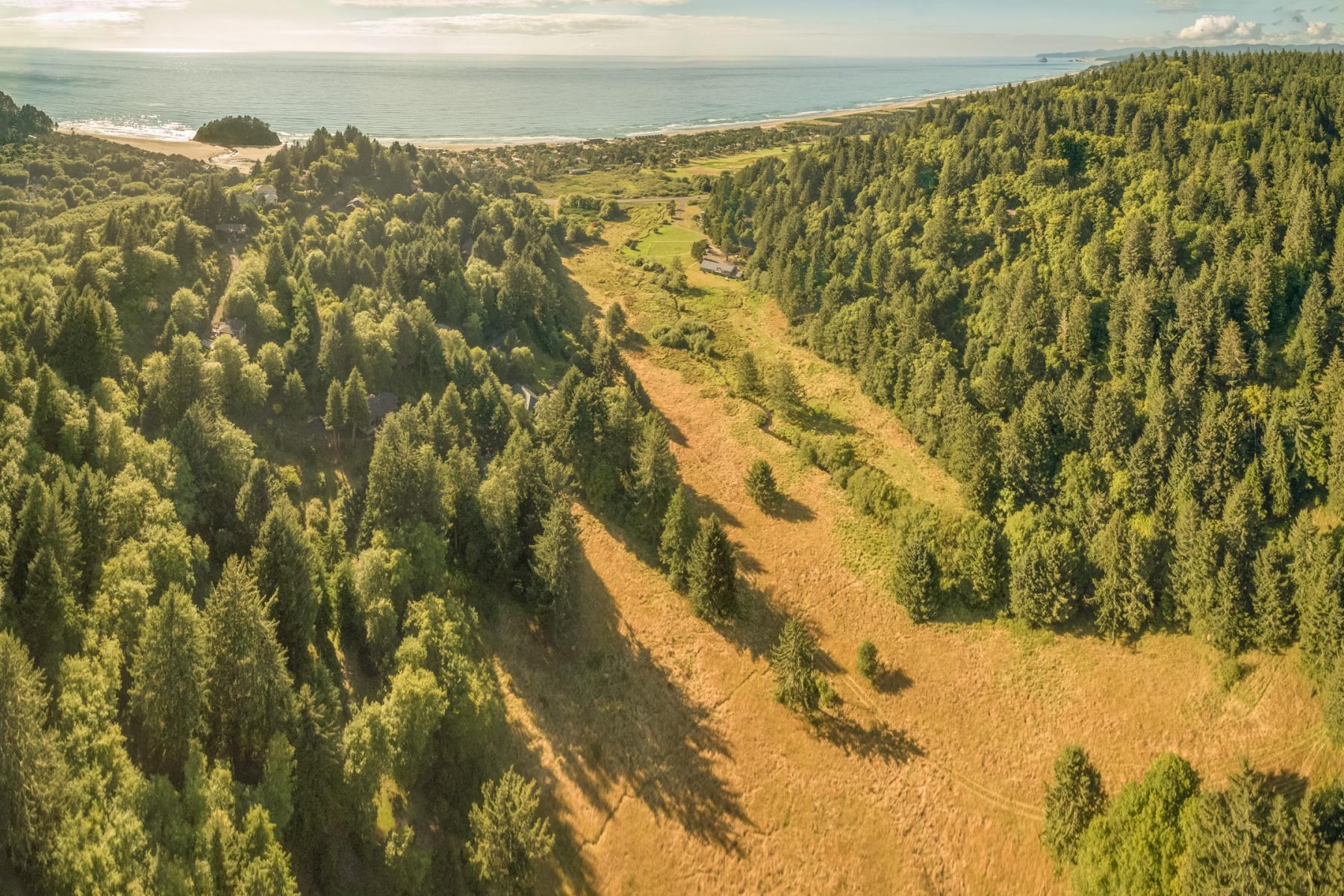 Đất đai vì Bán tại 0 SCHOOLHOUSE RD, NESKOWIN Neskowin, Oregon, 97149 Hoa Kỳ