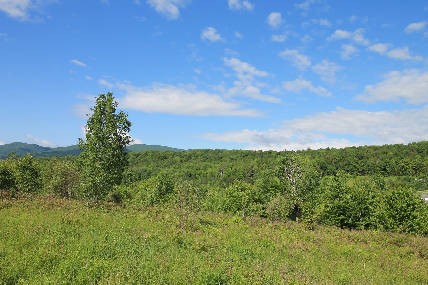 Land for Sale at Eleven acres in Braintree 0 Bent Hill Road Braintree, Vermont 05060 United States