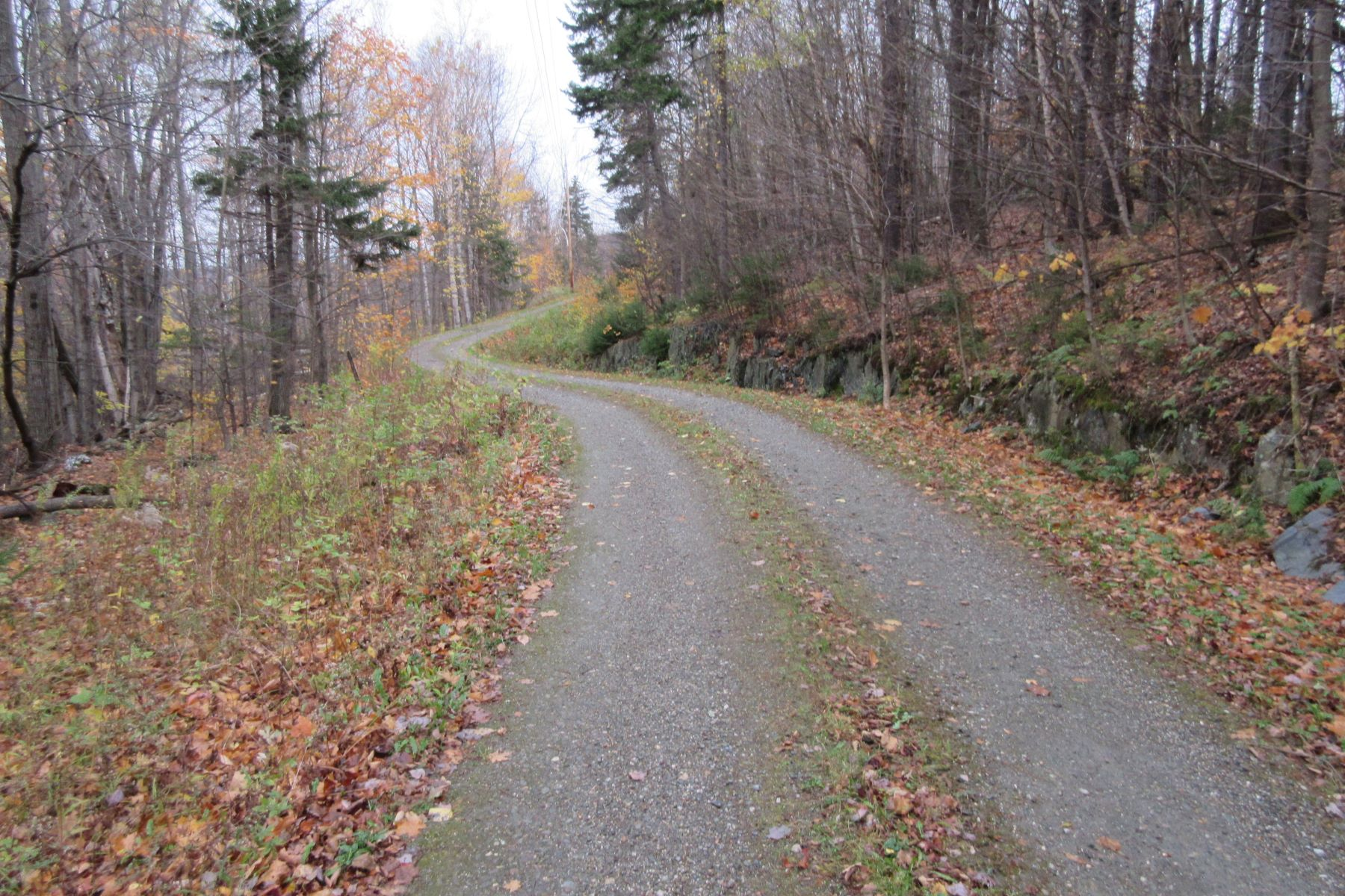 Land for Sale at 19 Acre Wooded Lot 0 Downes, Underhill, Vermont, 05489 United States