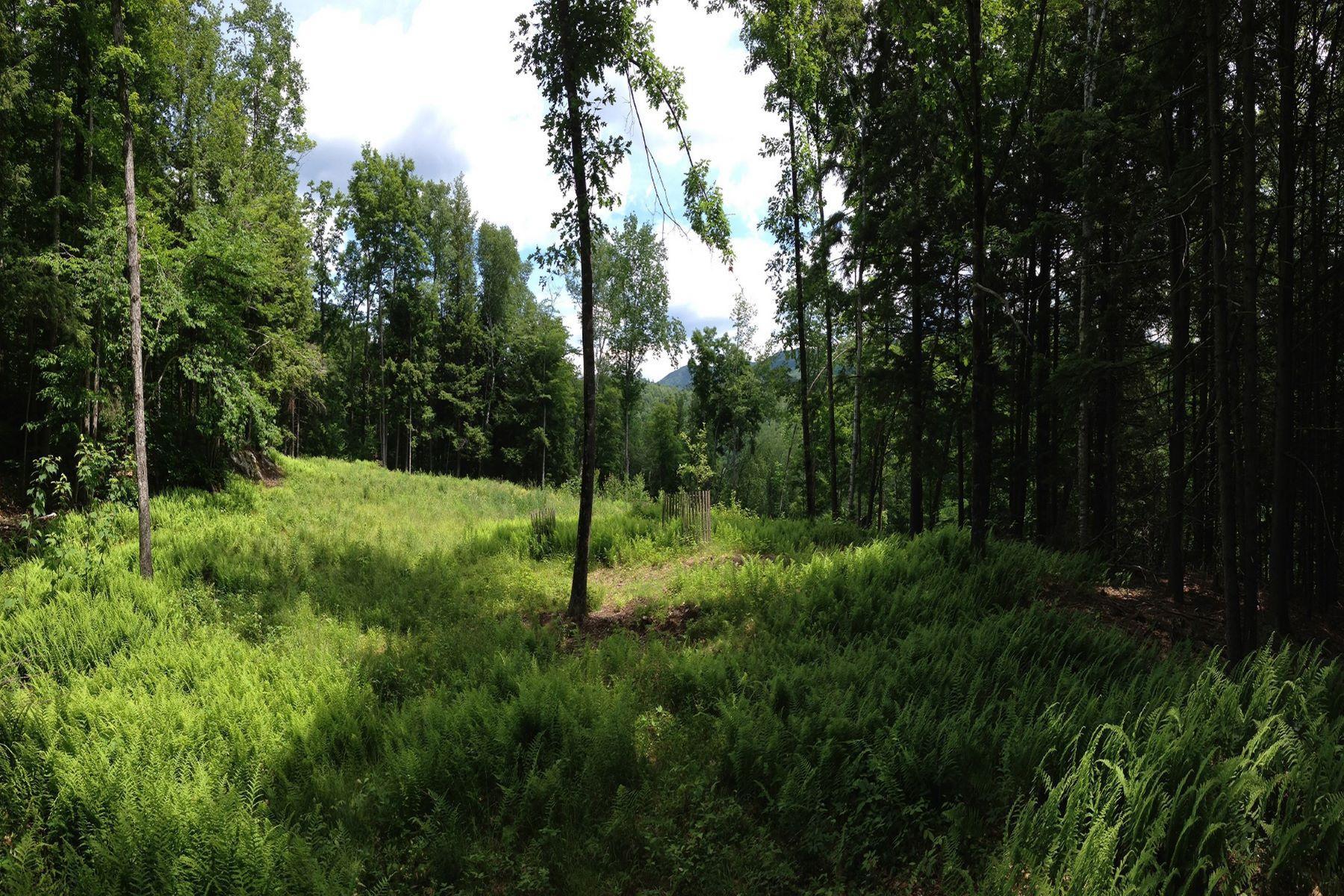 Terrain pour l Vente à Cole Pond Road, Jamaica Cole Pond Rd Jamaica, Vermont, 05343 États-Unis
