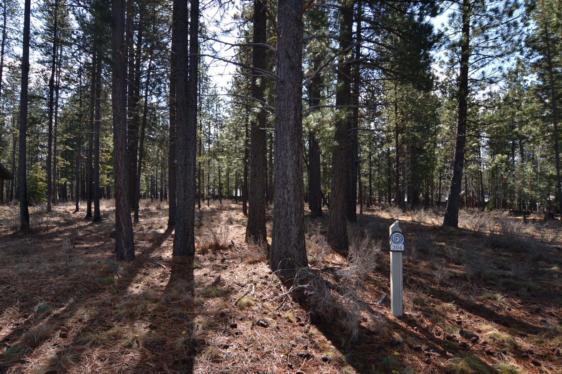 Land for Sale at Ready to build? 17761 Fireglass Ct Lot 204 Bend, Oregon, 97707 United States