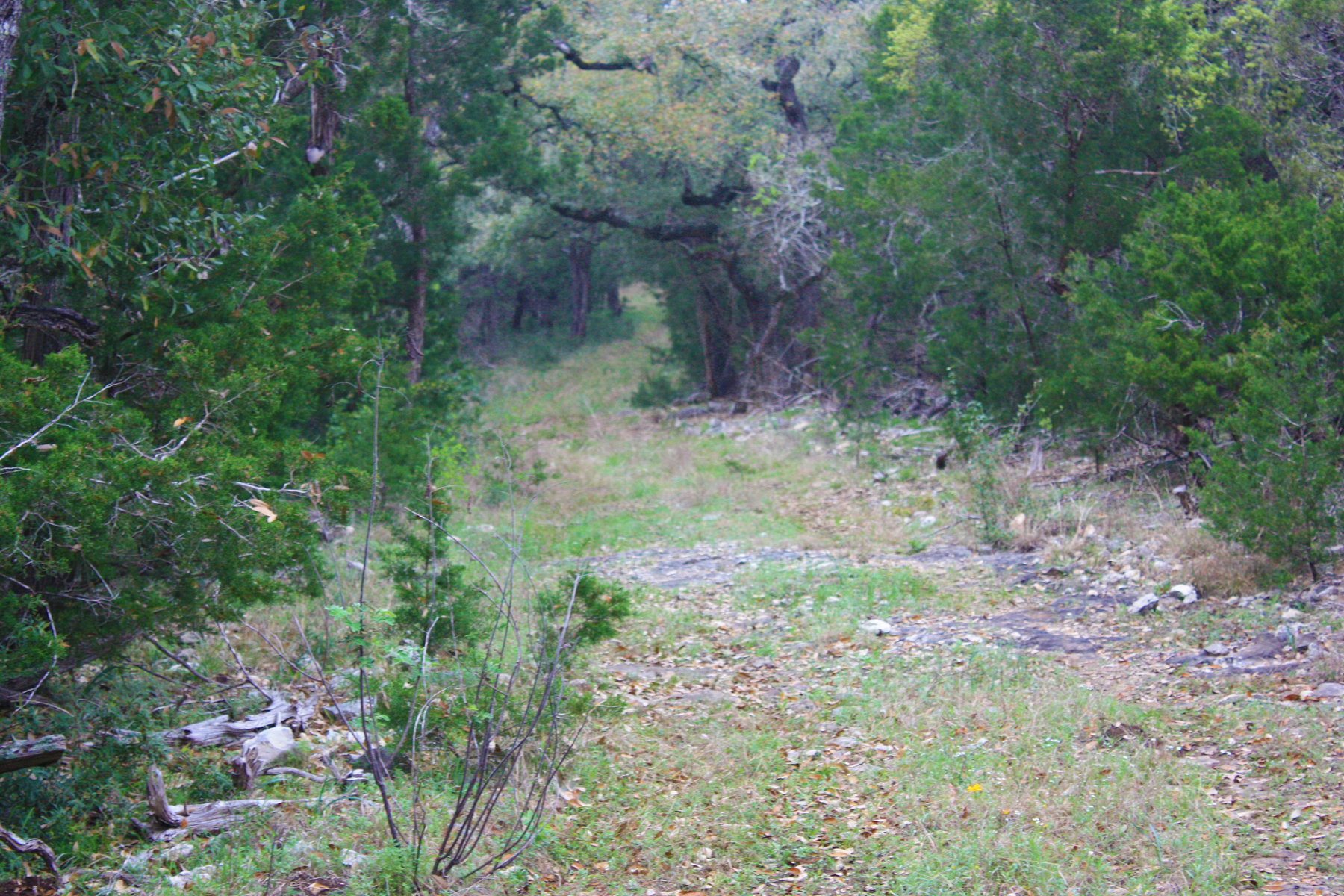 Additional photo for property listing at 55+/- Acres in Bexar Co. 6780 FM 1863 Bulverde, Texas 78163 United States
