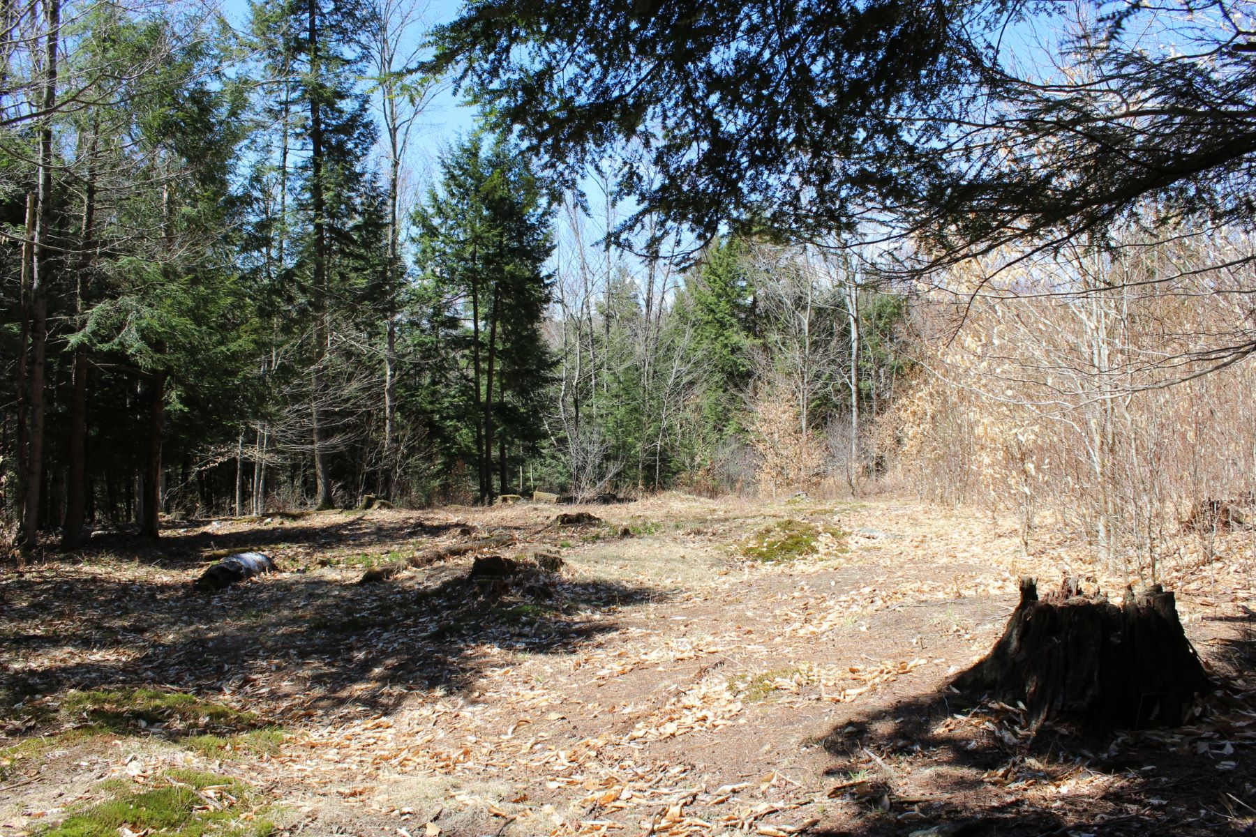 Terrain pour l Vente à Near your favorite ski areas 25 Filion Drive, Lot #5 Springfield, Vermont, 05156 États-Unis