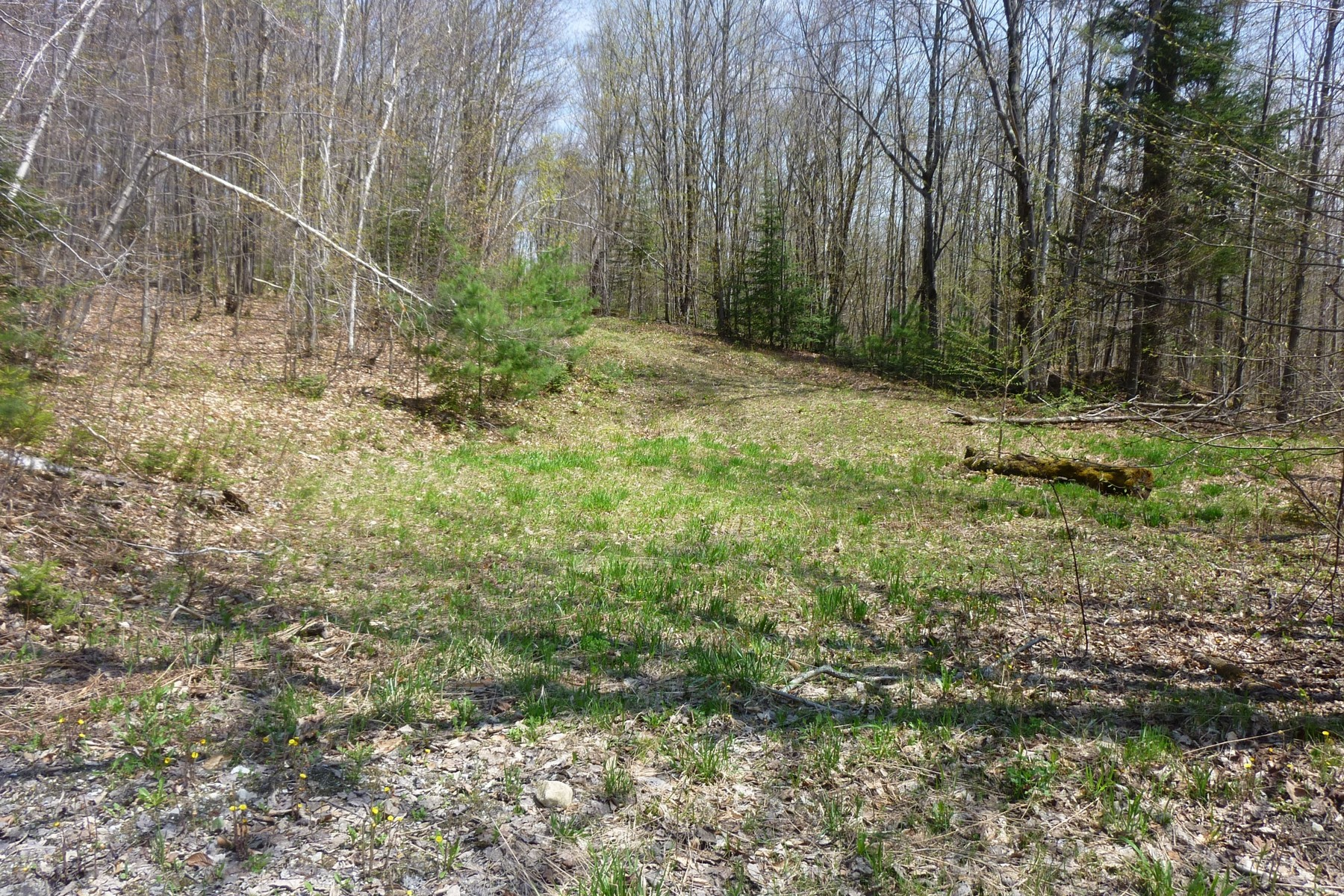 Terreno por un Venta en Andover Acreage, Close to Skiing! lot 3 North Hill Rd Andover, Vermont, 05143 Estados Unidos