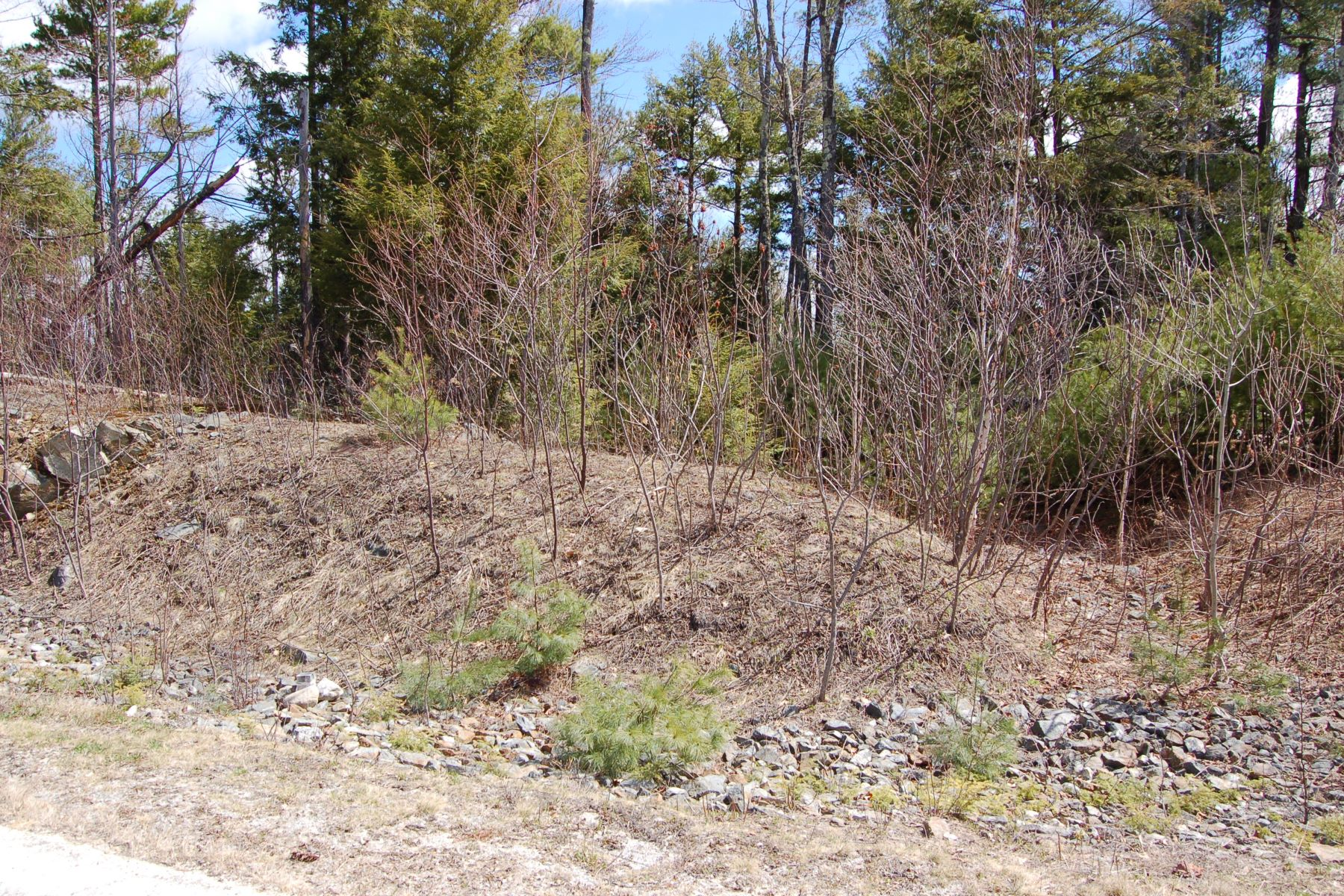 Land for Sale at 105 Chapin, Newbury Newbury, New Hampshire, 03255 United States