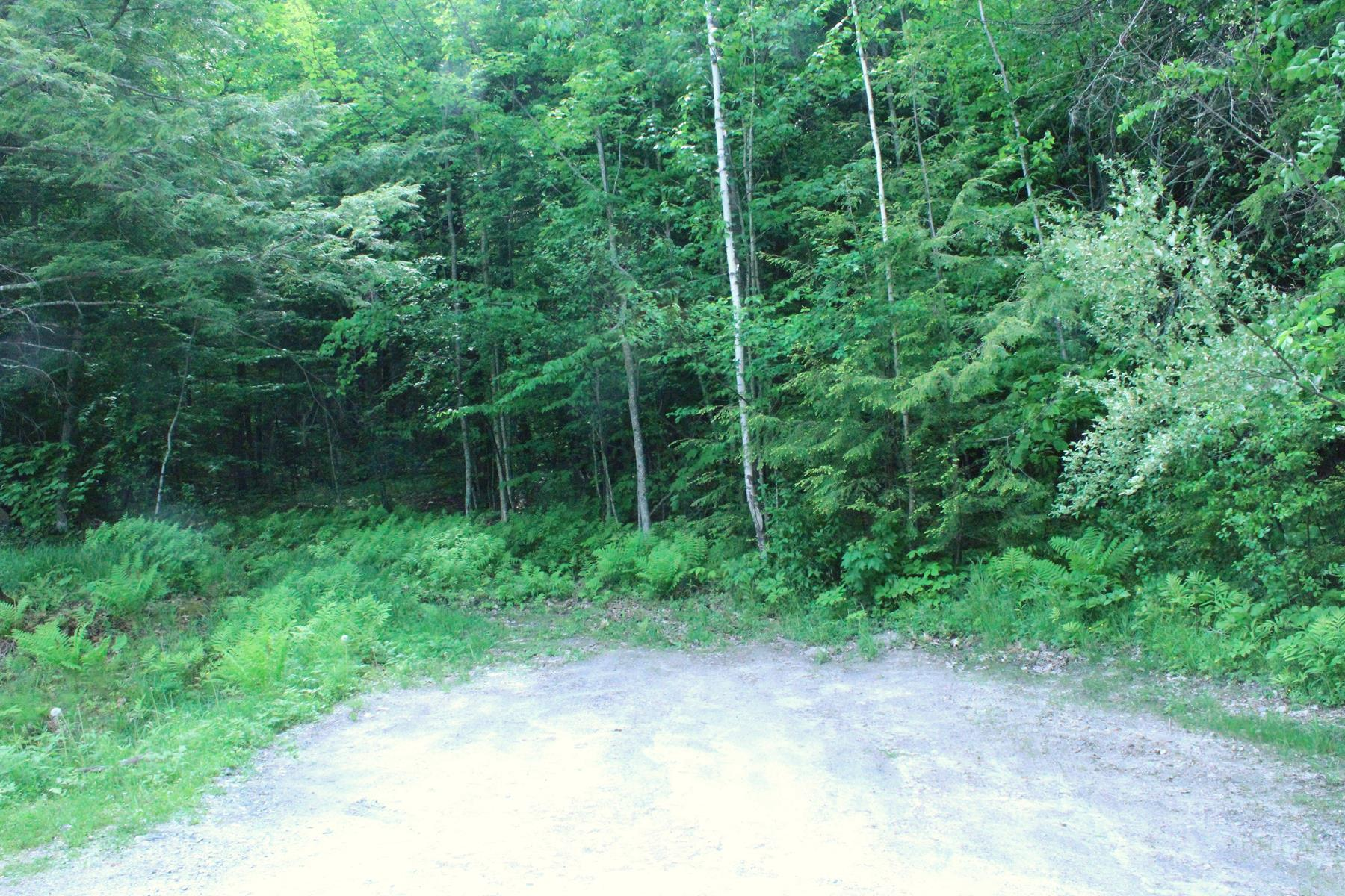 Land for Sale at 0 W Hoyt Ln, Springfield 0 W W Hoyt Ln Springfield, New Hampshire 03284 United States
