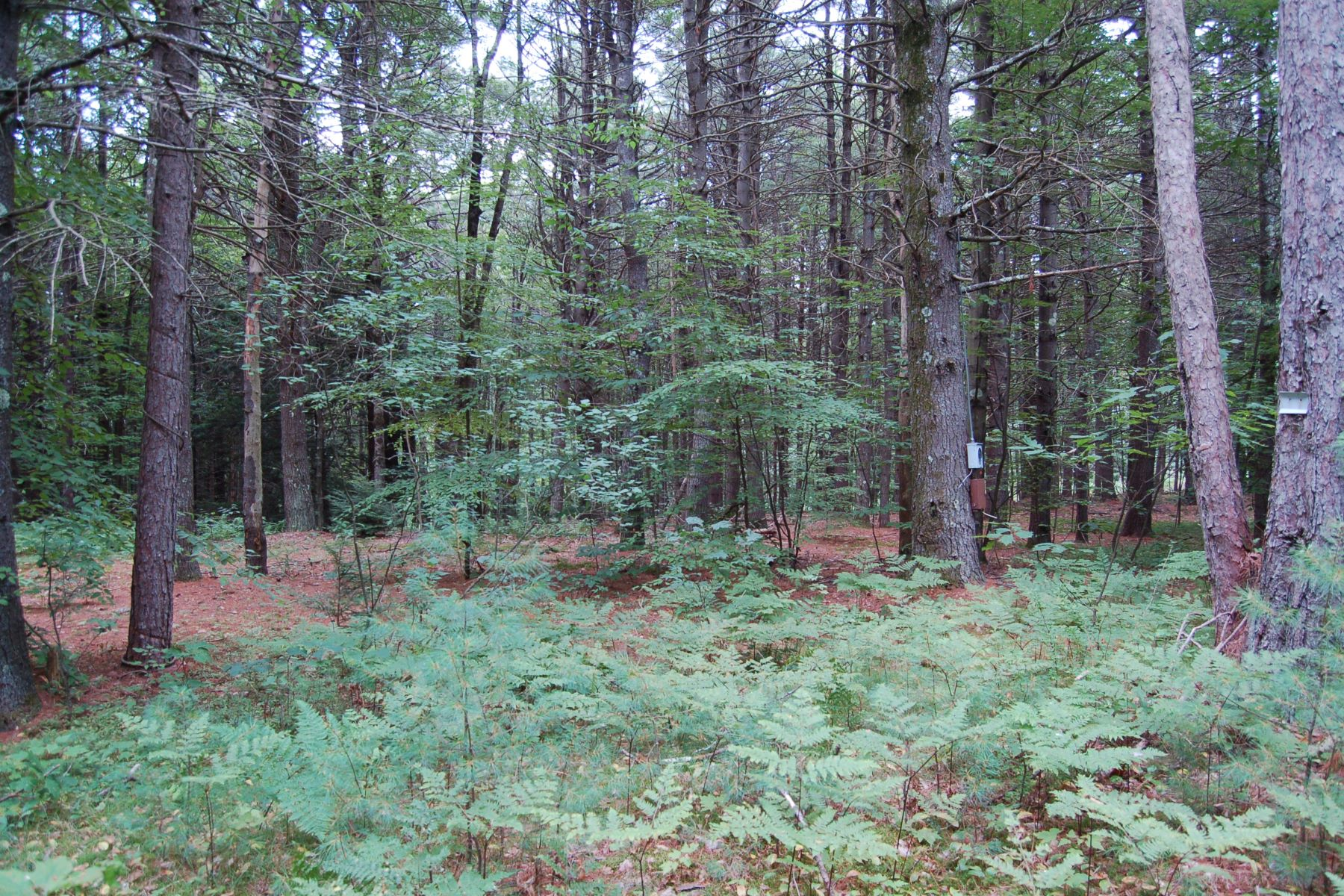Land for Sale at Very Attractive 7.5 221 Locust Ln Henniker, New Hampshire 03242 United States