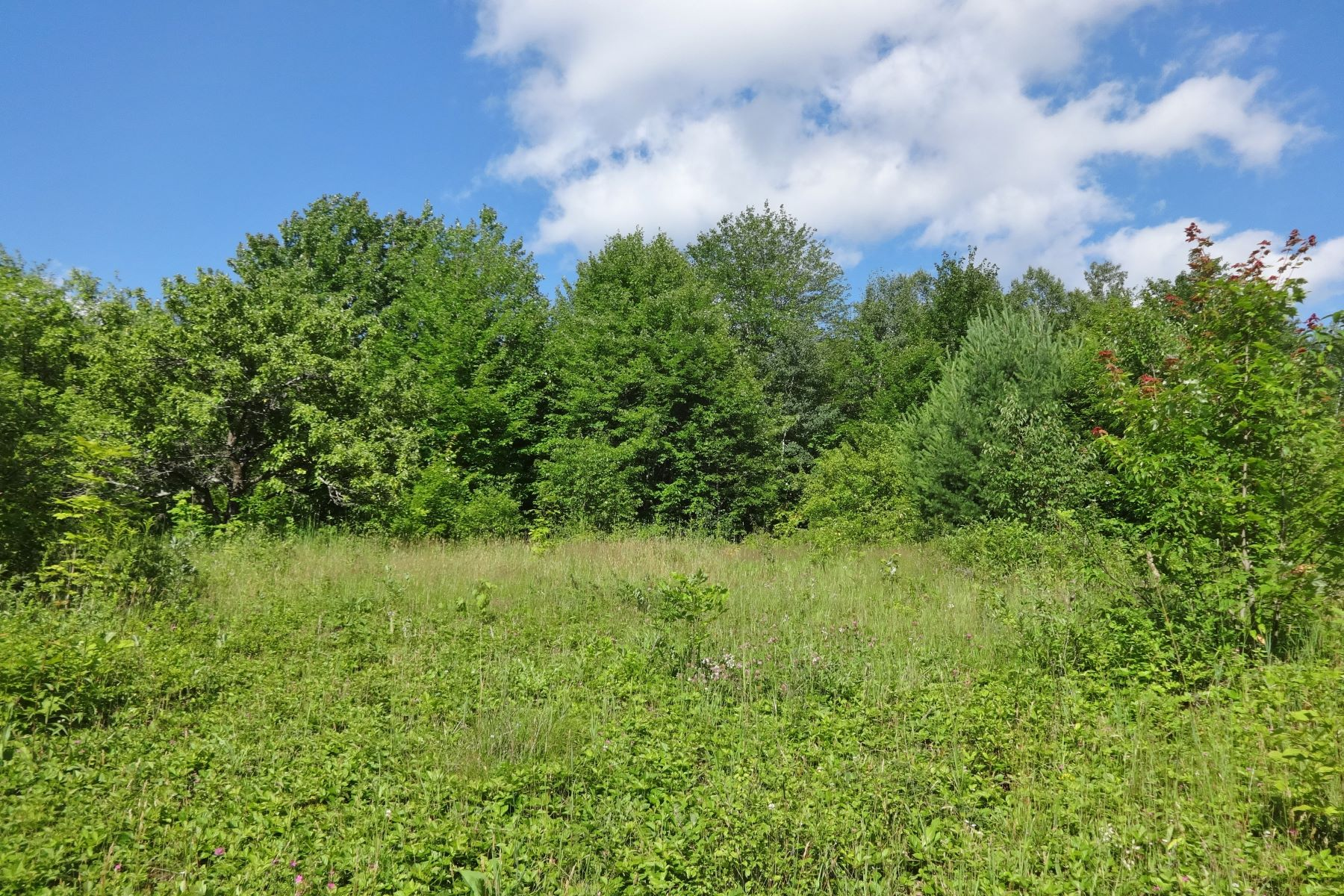 Land for Sale at Enjoy all recreation Vermont offers Ox Hill Ln, Royalton, Vermont, 05068 United States