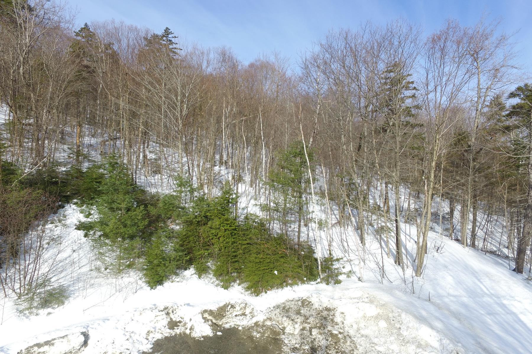 Terreno por un Venta en 52 Skytop, Newbury Newbury, Nueva Hampshire, 03255 Estados Unidos