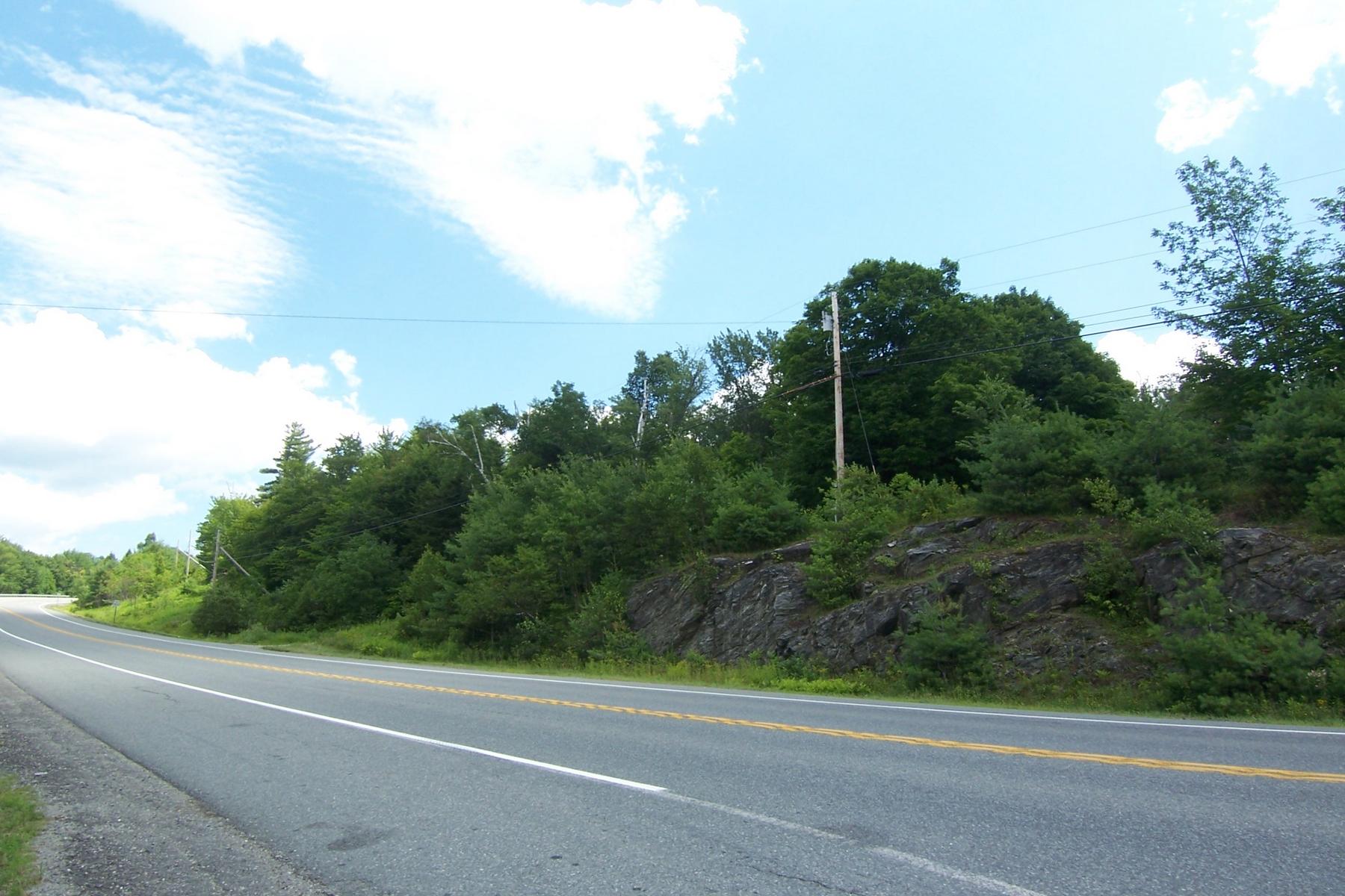 Terrain pour l Vente à Own Your Own Mountain 0 Route 9 Marlboro, Vermont, 05344 États-Unis