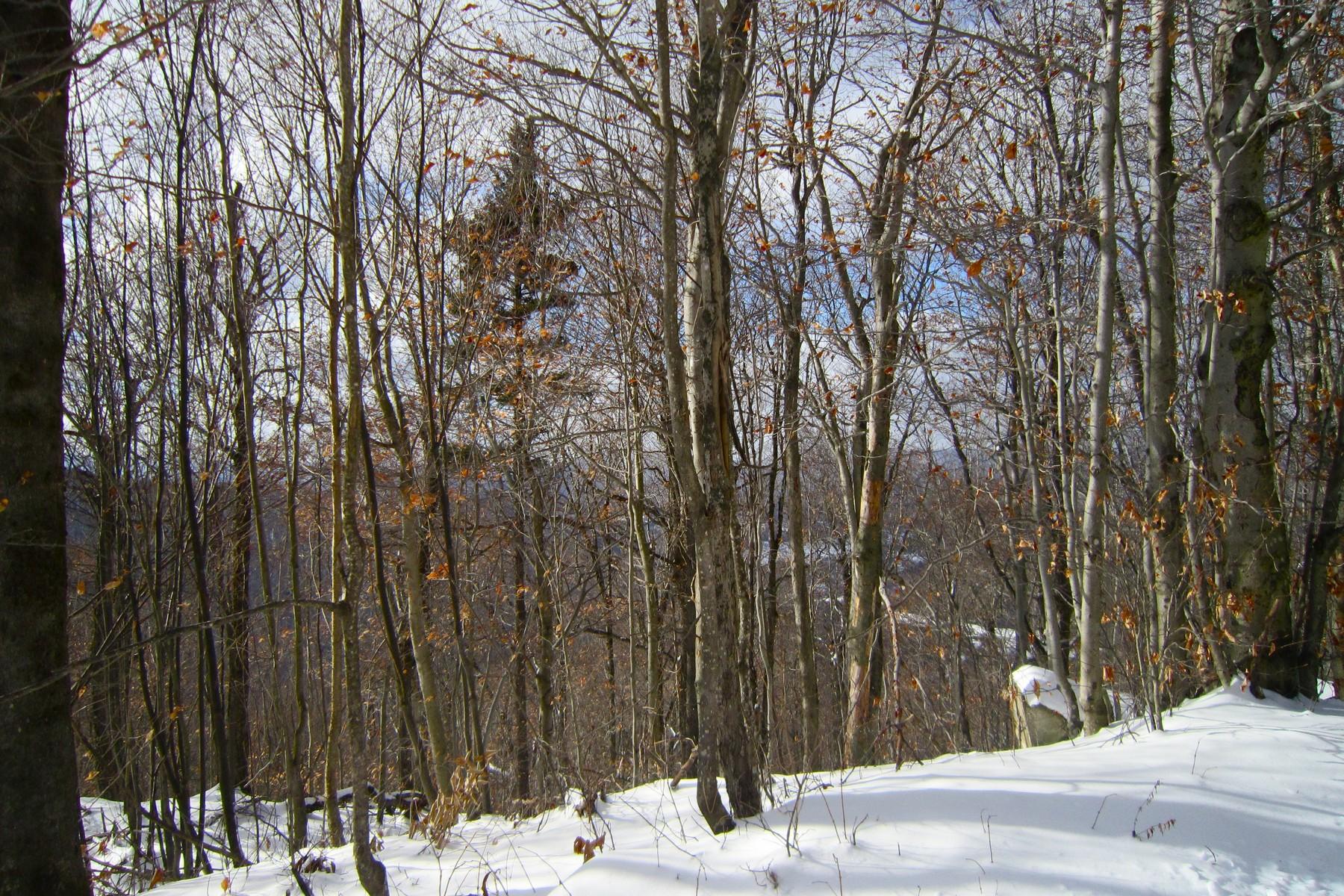 Земля для того Продажа на Long Range Views!! Lots 48- Andover Ridge Rd Lots 48-51 Andover, Вермонт, 05143 Соединенные Штаты