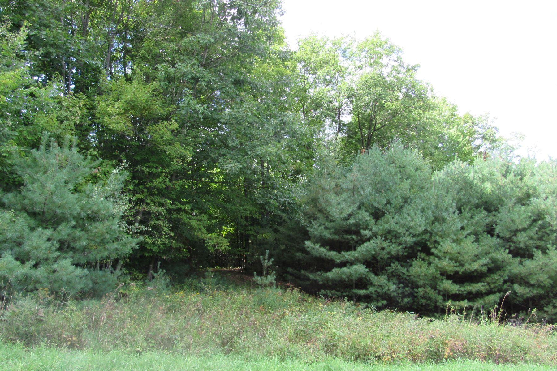 Terreno por un Venta en 110 Lily Lane, Haverhill 110 Lily Ln Haverhill, Nueva Hampshire 03774 Estados Unidos