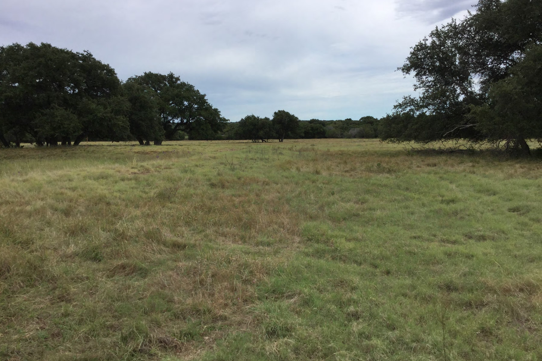 Farm / Ranch / Plantation for Sale at 1728 N Us Hwy 277, Eldorado Eldorado, Texas 76936 United States