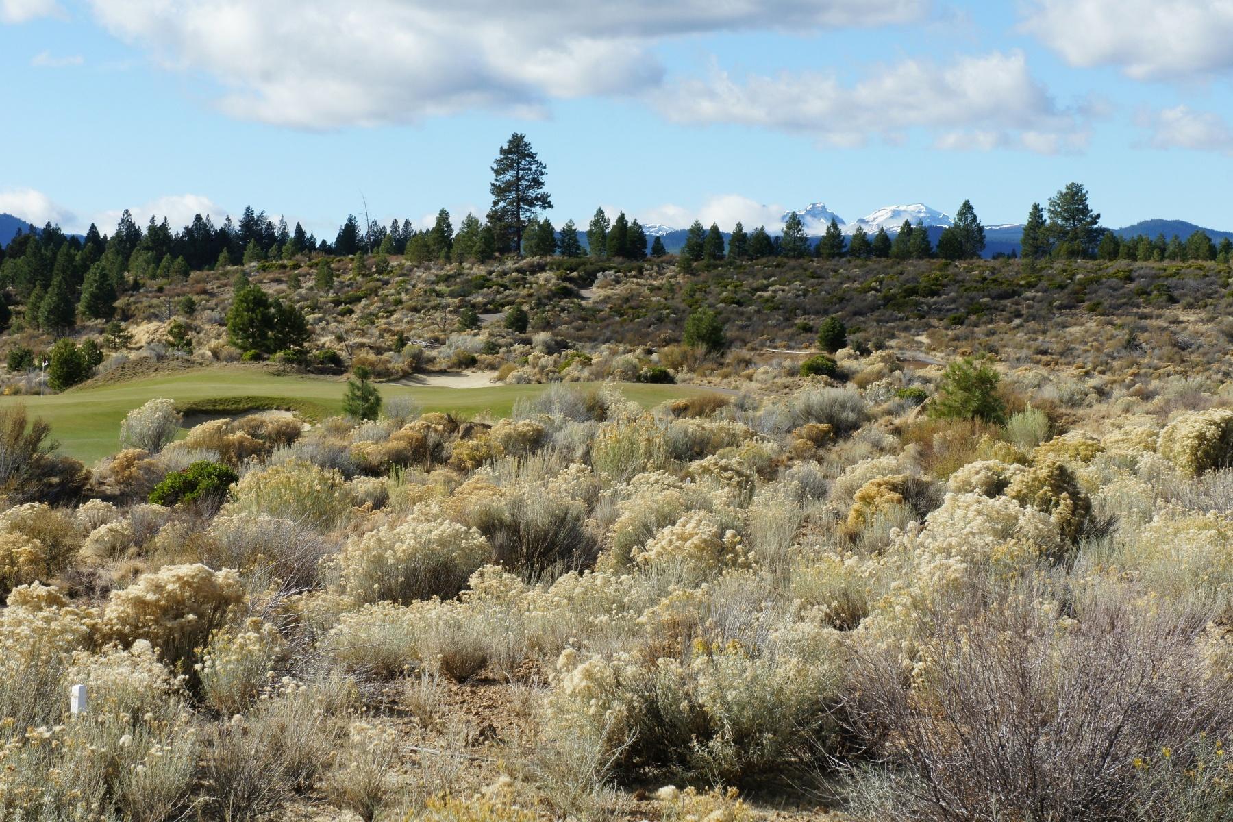 Terreno para Venda às Premium Tetherow Lot 61535 Hardin Martin Ct Lot 205 Bend, Oregon, 97702 Estados Unidos