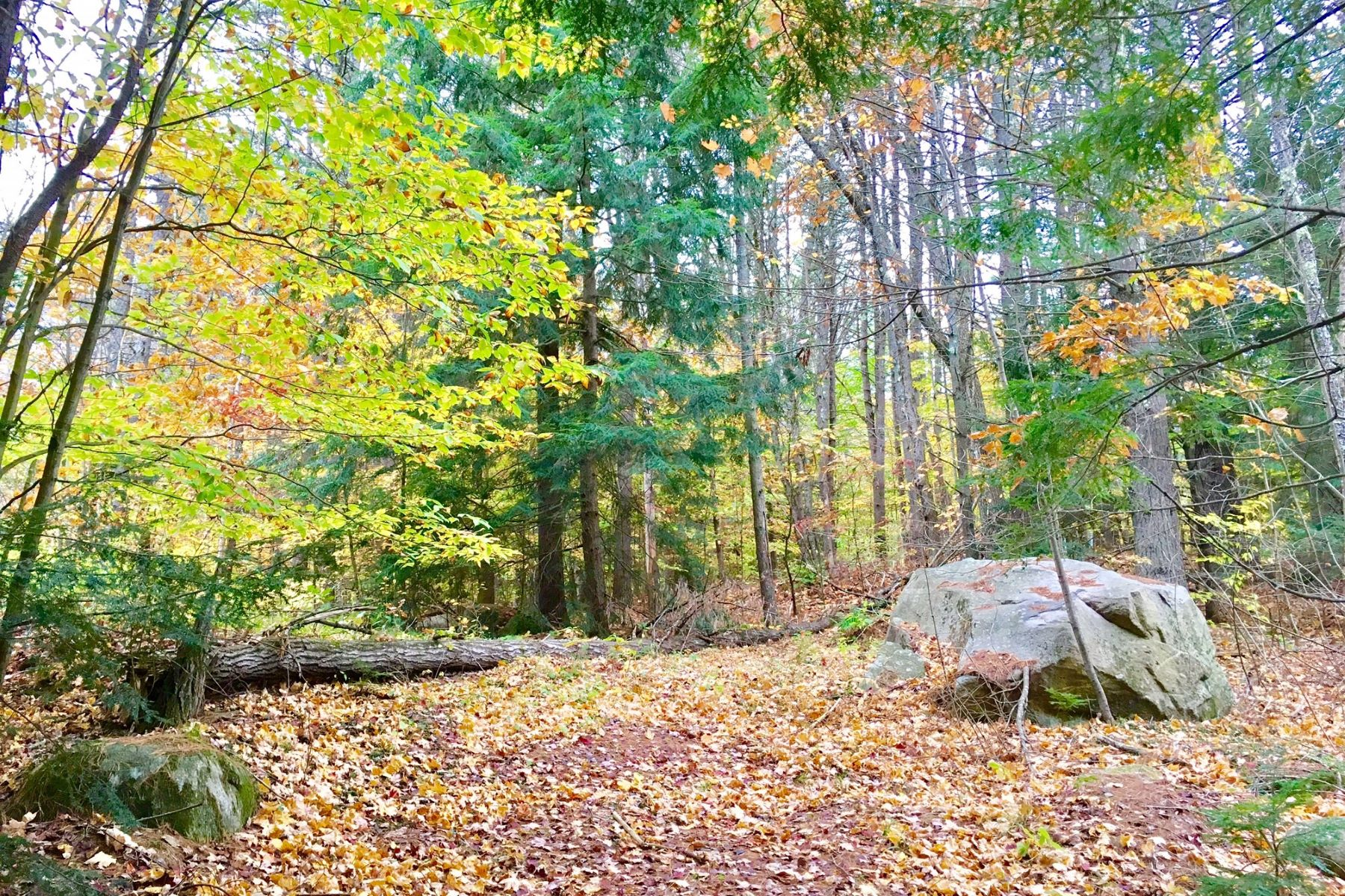 Land for Sale at 20 West Shore, Swanzey Swanzey, New Hampshire 03446 United States