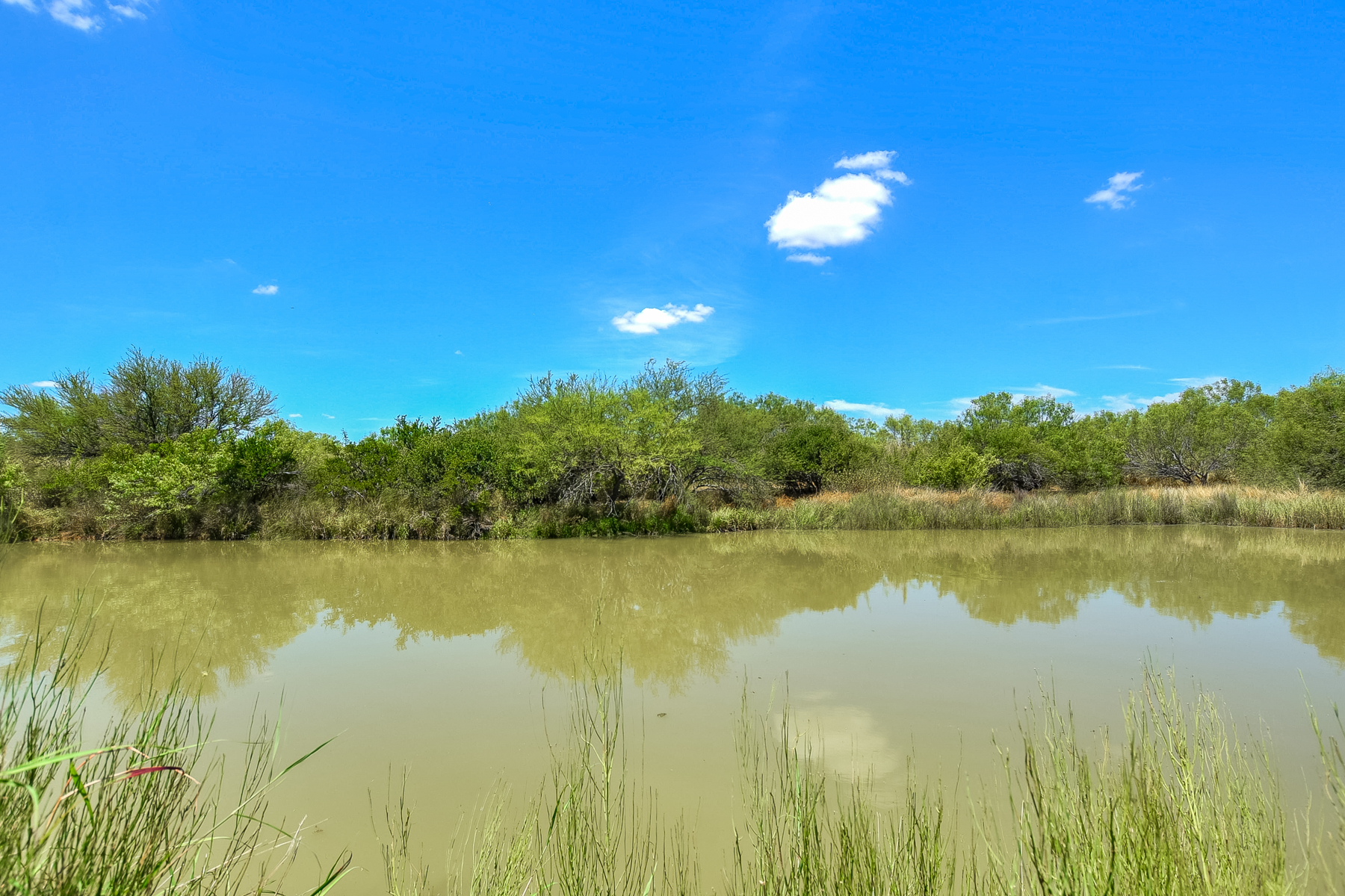 Additional photo for property listing at Flat Creek Ranch in Catarina 15906 S US Hwy 83 Catarina, Texas 78836 United States